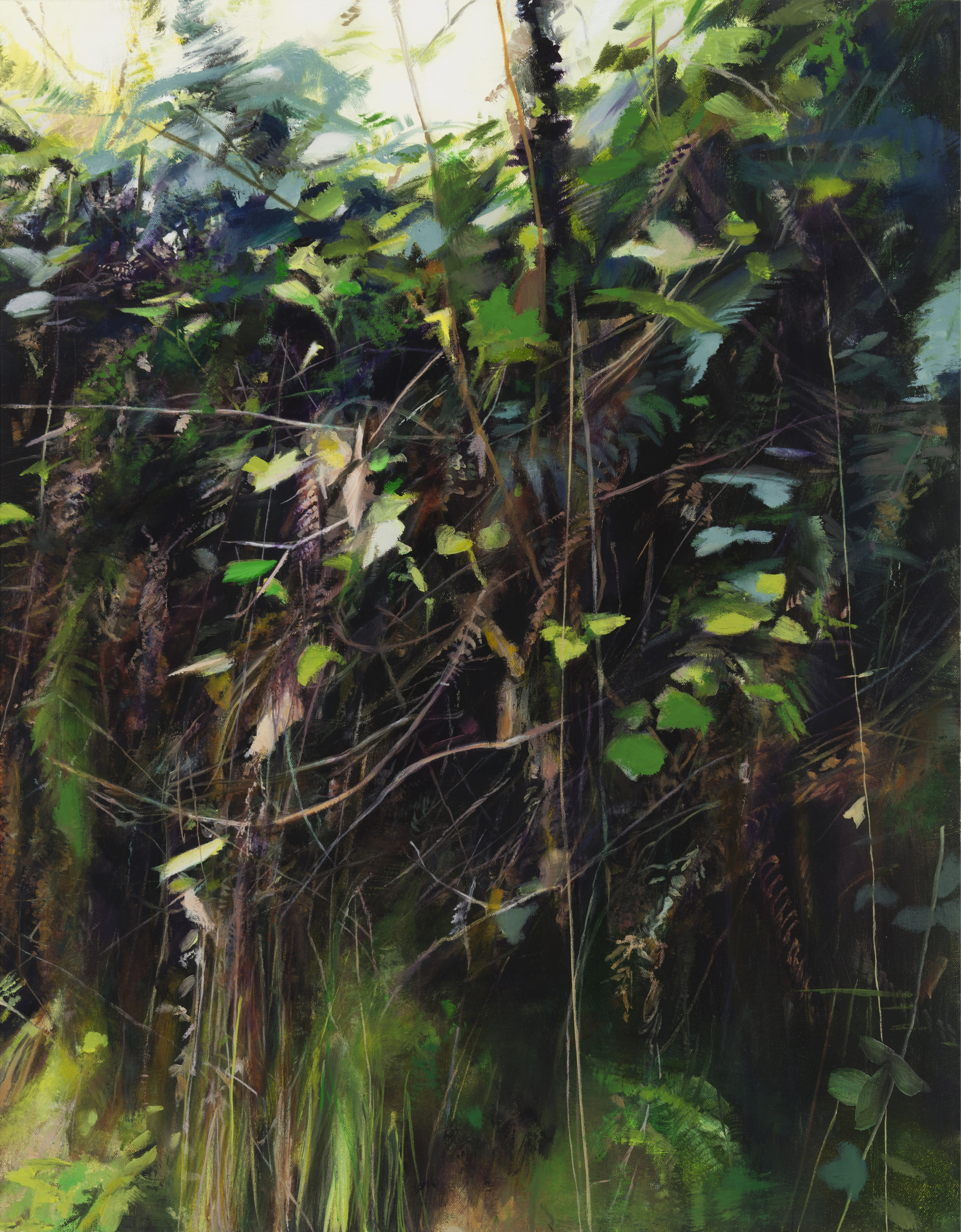 "bear valley  •  22"" x 28""  oil on canvas  2014"
