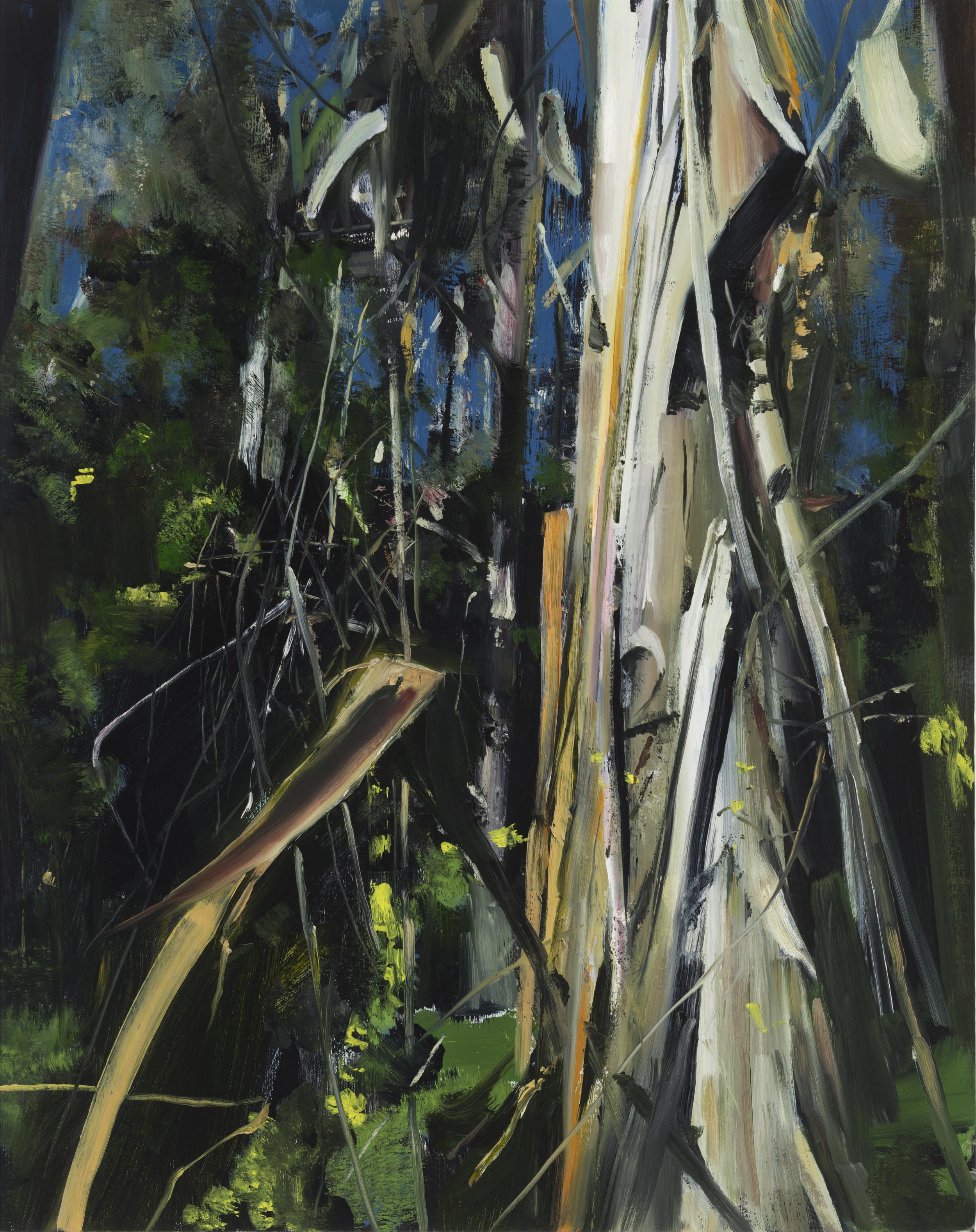 """palomarin (eucalyptus) •  30"""" x 24""""  oil on canvas  2014"""