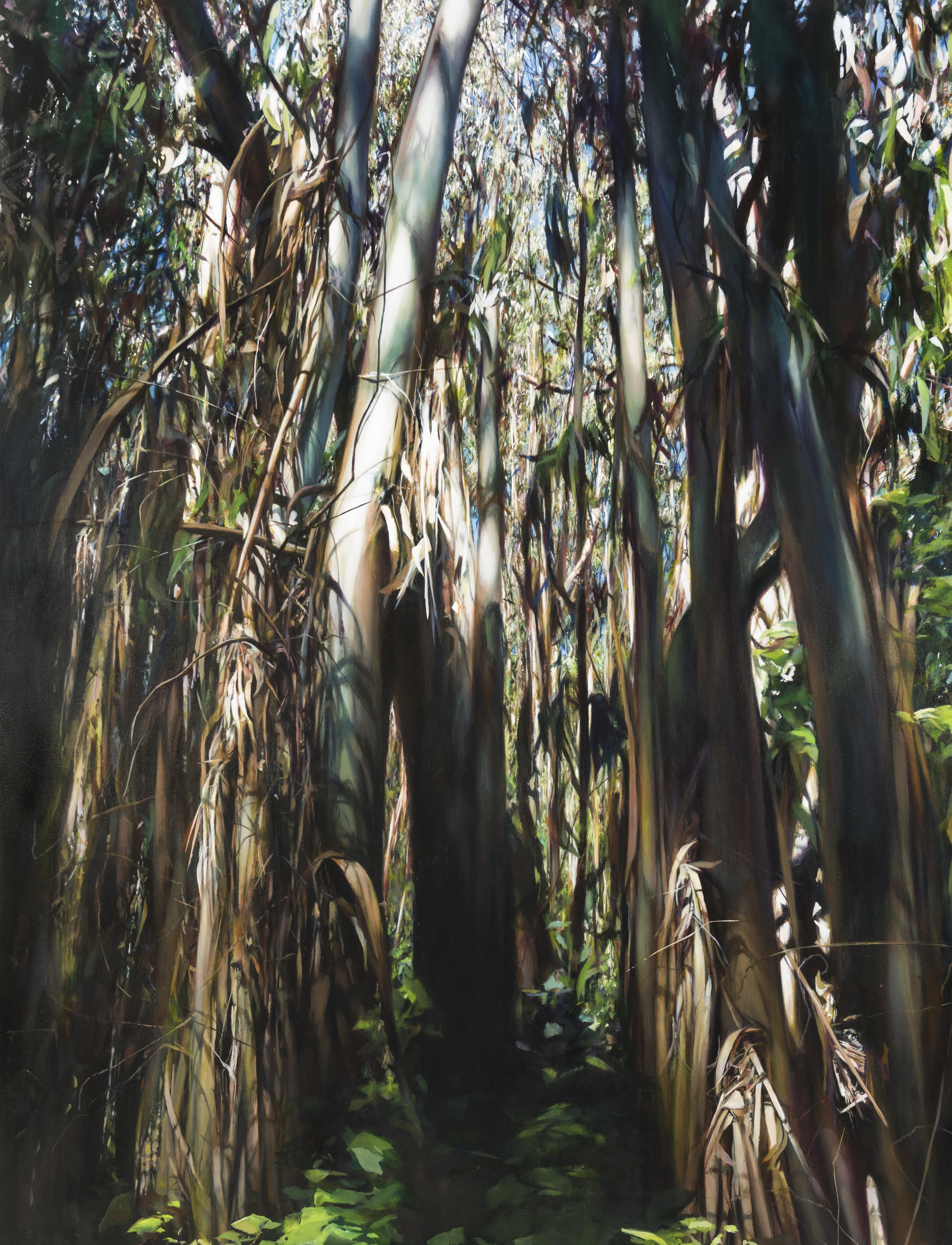 """eucalyptus   72"""" x 56""""  oil on canvas  2015"""