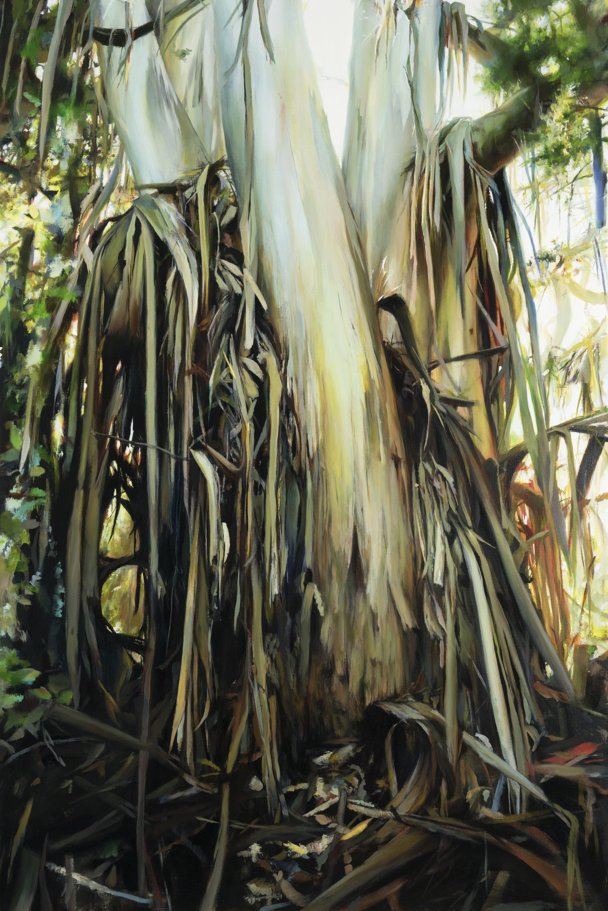 """Wunderlich  •  60"""" x 40""""  oil on canvas  2017"""