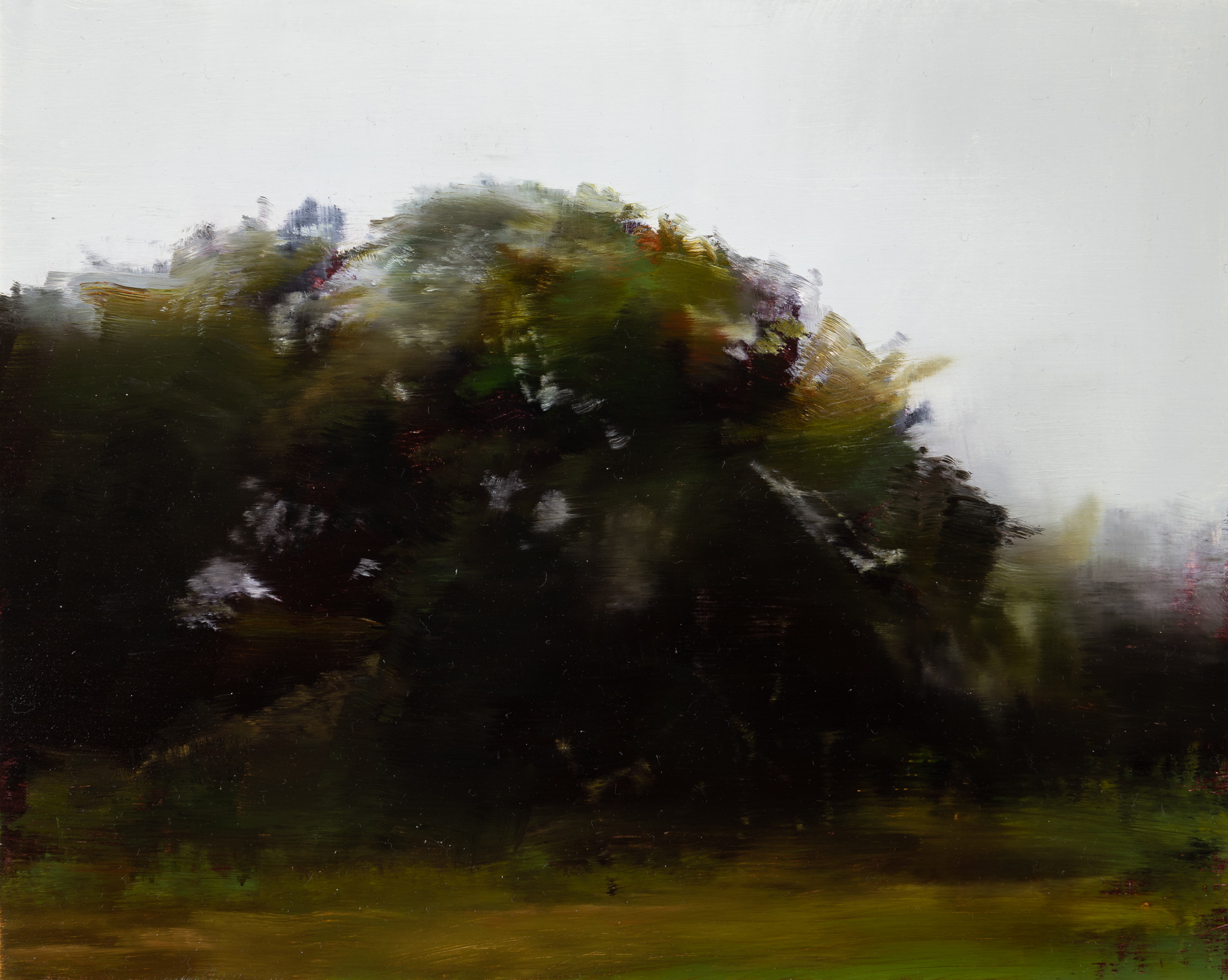 "oak study   8"" x 10""  oil on panel  2019"
