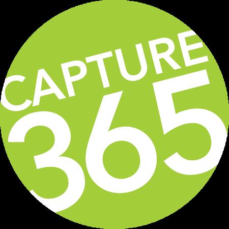 Capture365.png