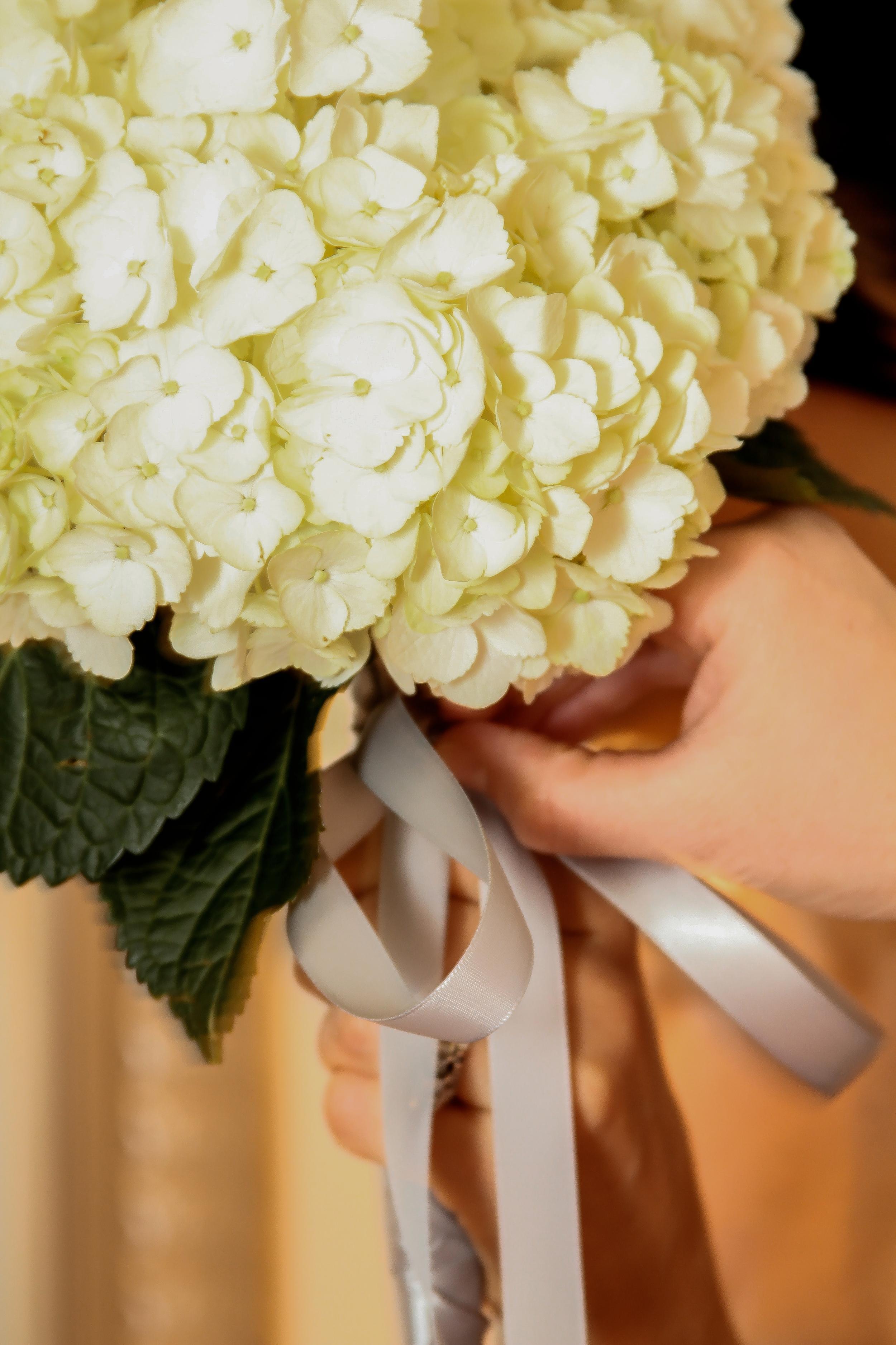 Wedding2016-12.jpg