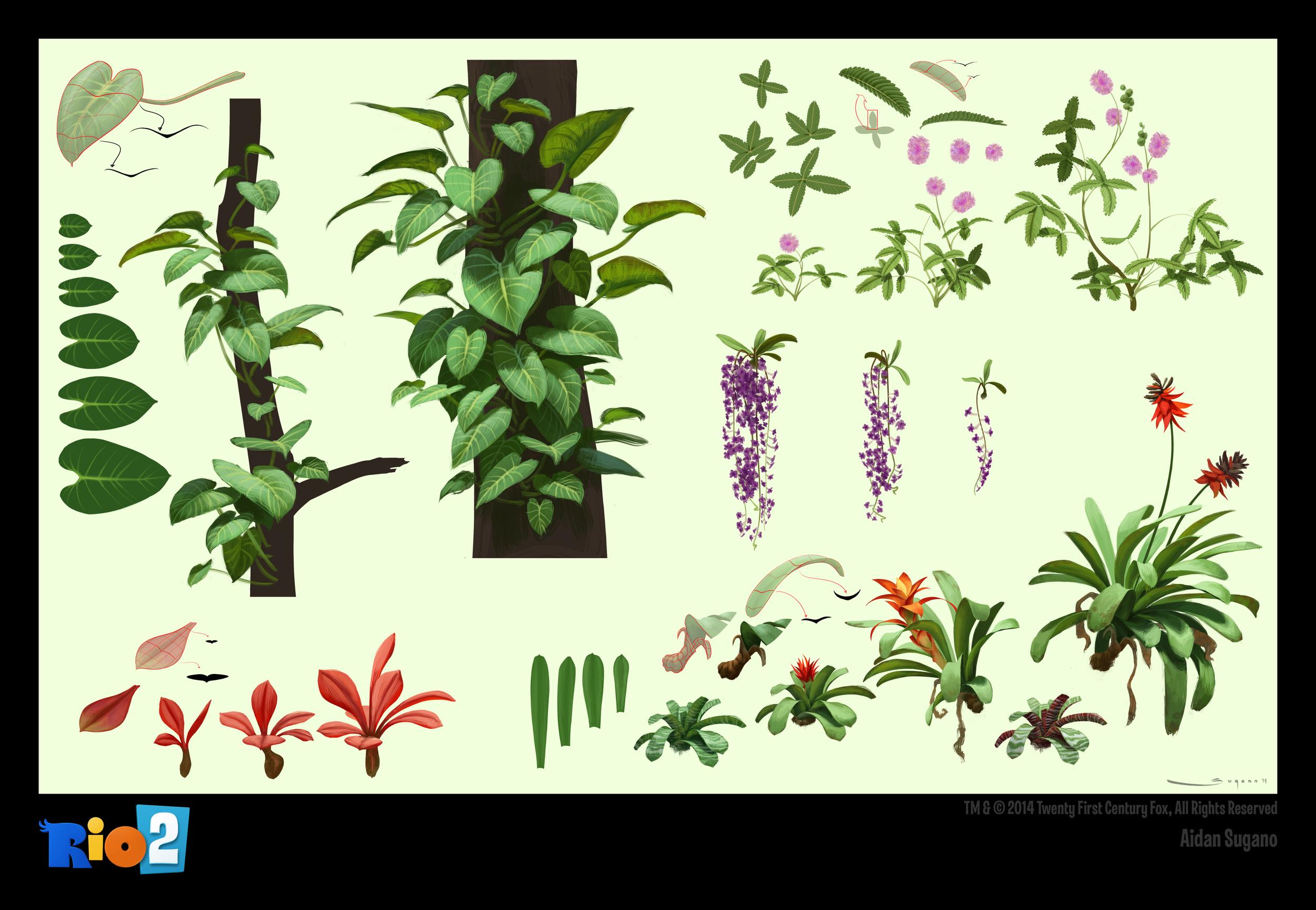 as_river_plants_01.jpg