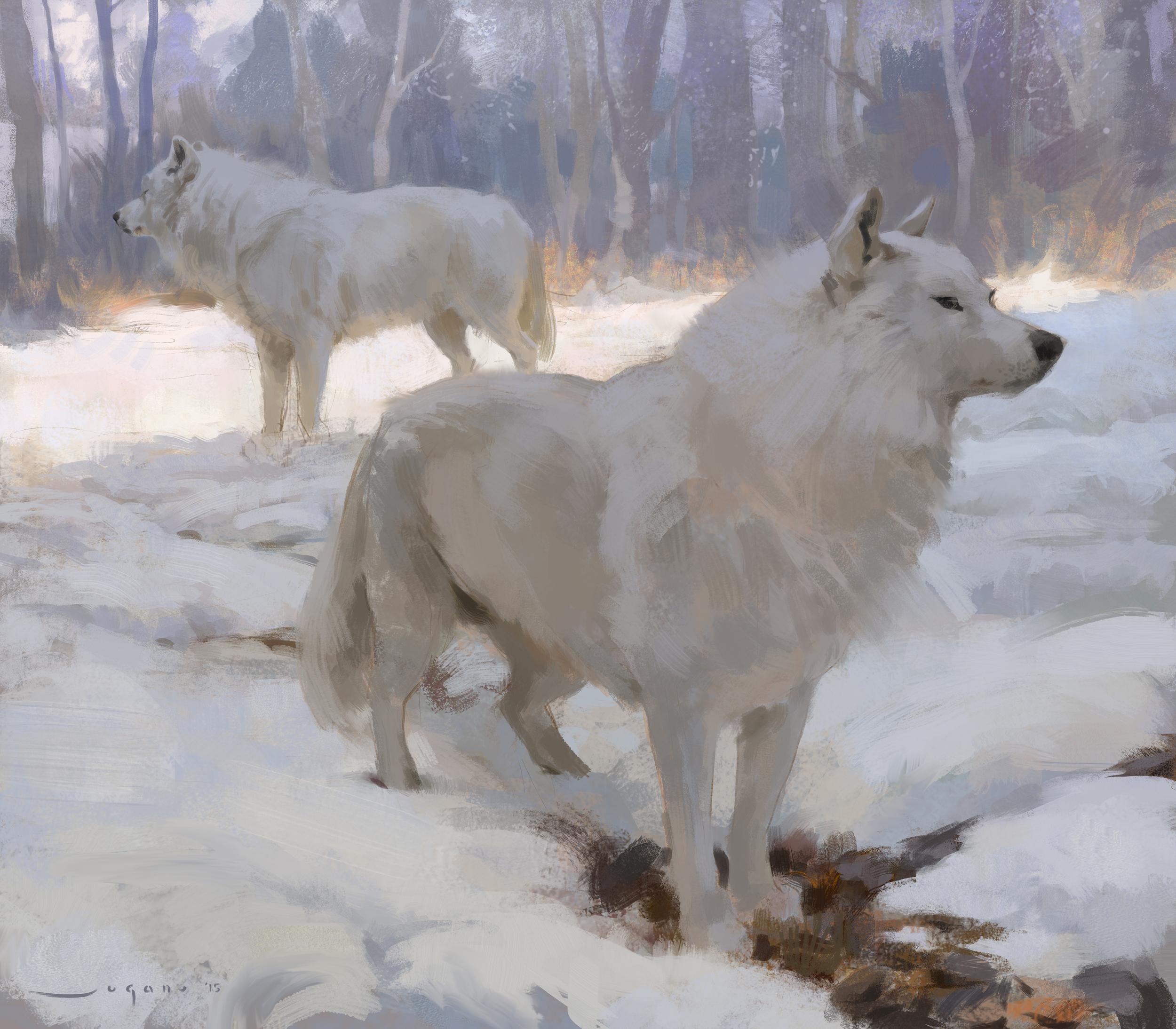 aSugano_wolves.jpg