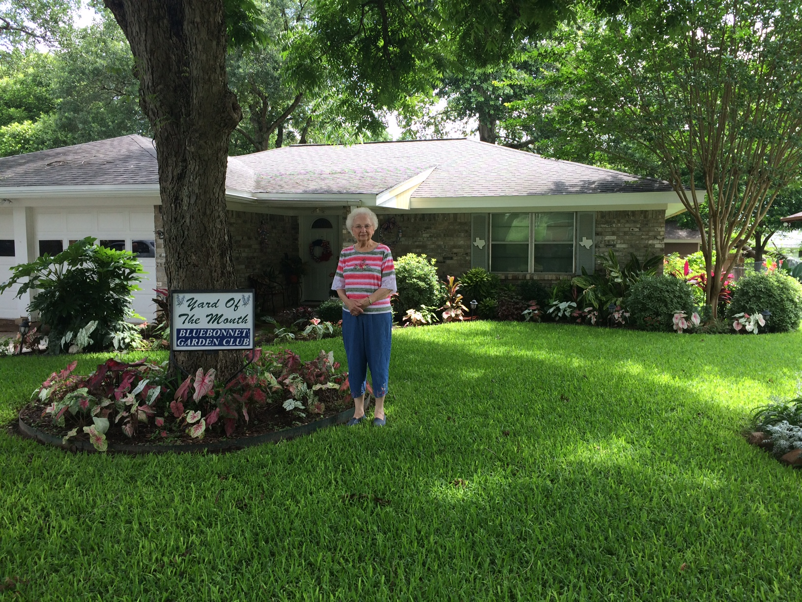 The June Yard of the Month award has been given to Darlene Blondeau at 1307 Tom Dee Street by Bluebonnet Garden Club. The yard is beautifully landscaped with numerous plants of red and white caladiums surrounding trees and outlining a front flowerbed. Among other plants are variegated pittosporum, loropetalum, foxtail fern, boxwood, Indian Hawthorn, begonias, a crepe myrtle and dusty Miller. Large gold dust and Hawaiian Ti Red Sister plants give added color to the garden. A large cluster of ginger at the edge of the house adds height and texture. Around the side of the house are yellow bells, coral cannas and roses. This yard is shaded by a large pecan tree as well as a live oak. The yard is well tended and loved by the owner and her relative Nathan Steen. The various colors, shapes, sizes and textures of the many plants work together to make this yard very pleasing to the eye.