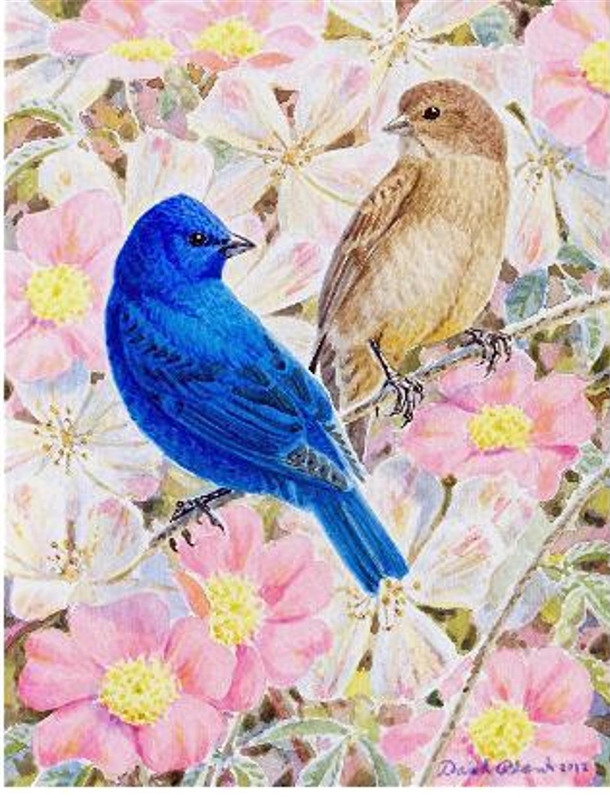 """Indigo Bunting Pair""  Watercolor by David Plank"