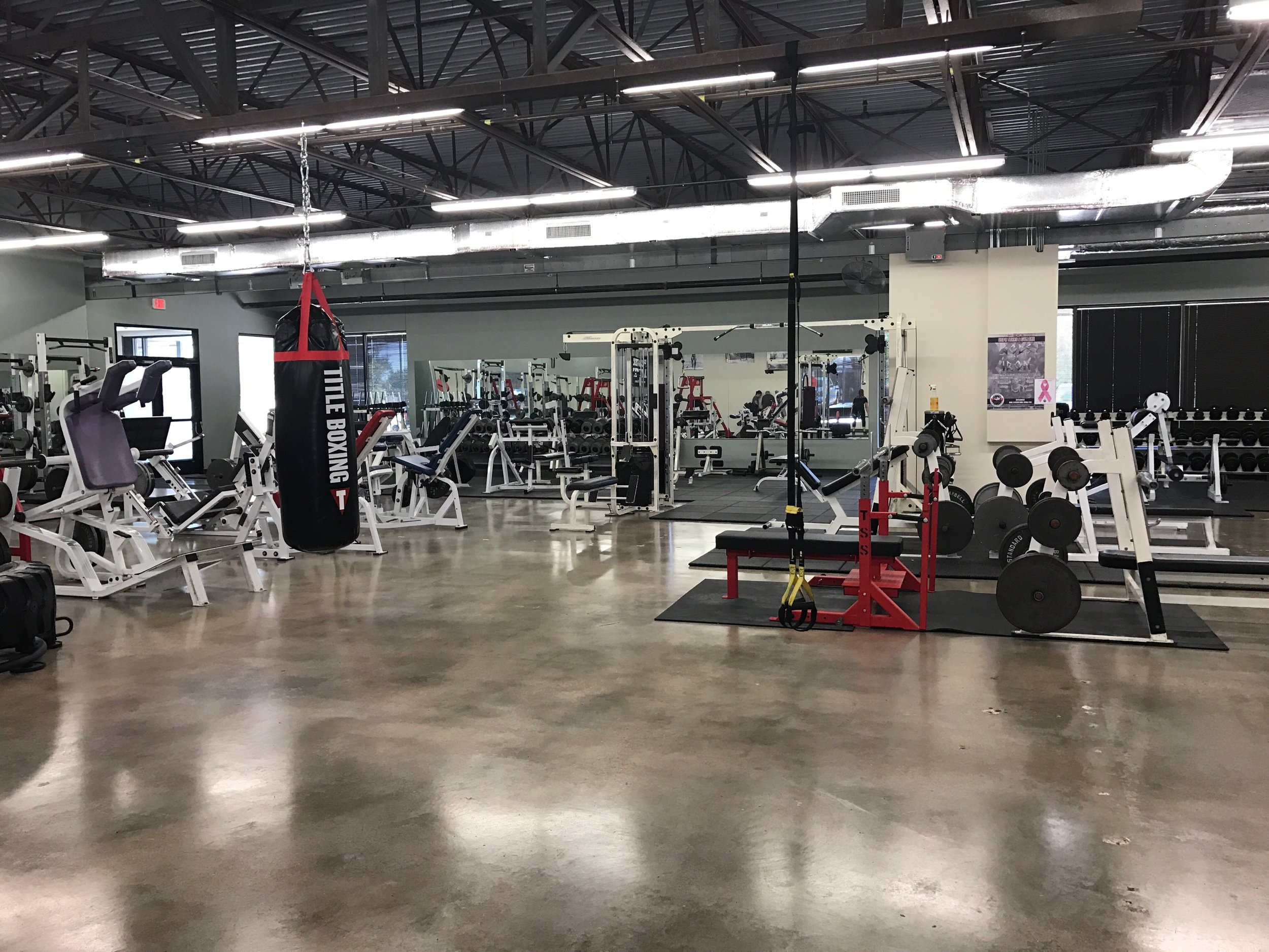Power racks, competition bench press, heavy bags and open gym space at Gym One.