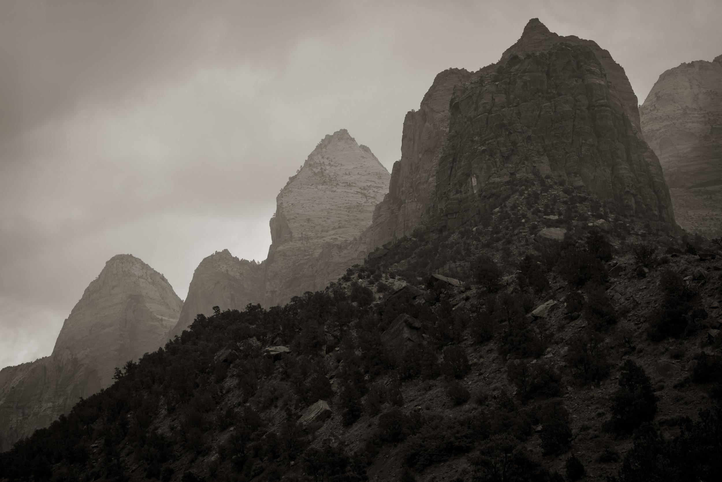 Rain in Zion