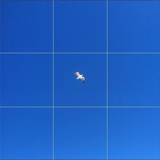 Screen Shot 2014-06-11 at 12.20.38 AM.png