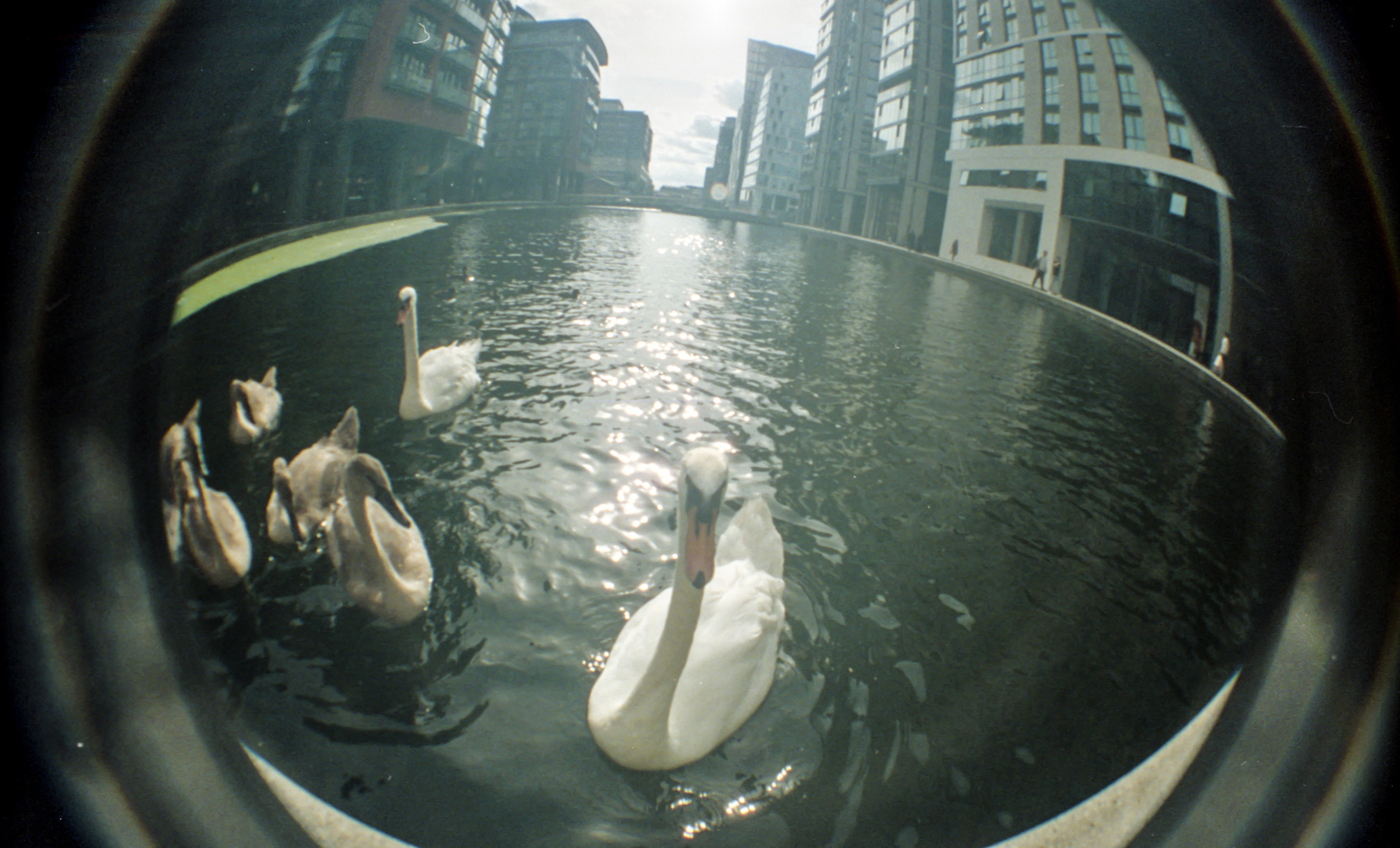 London, film lomography