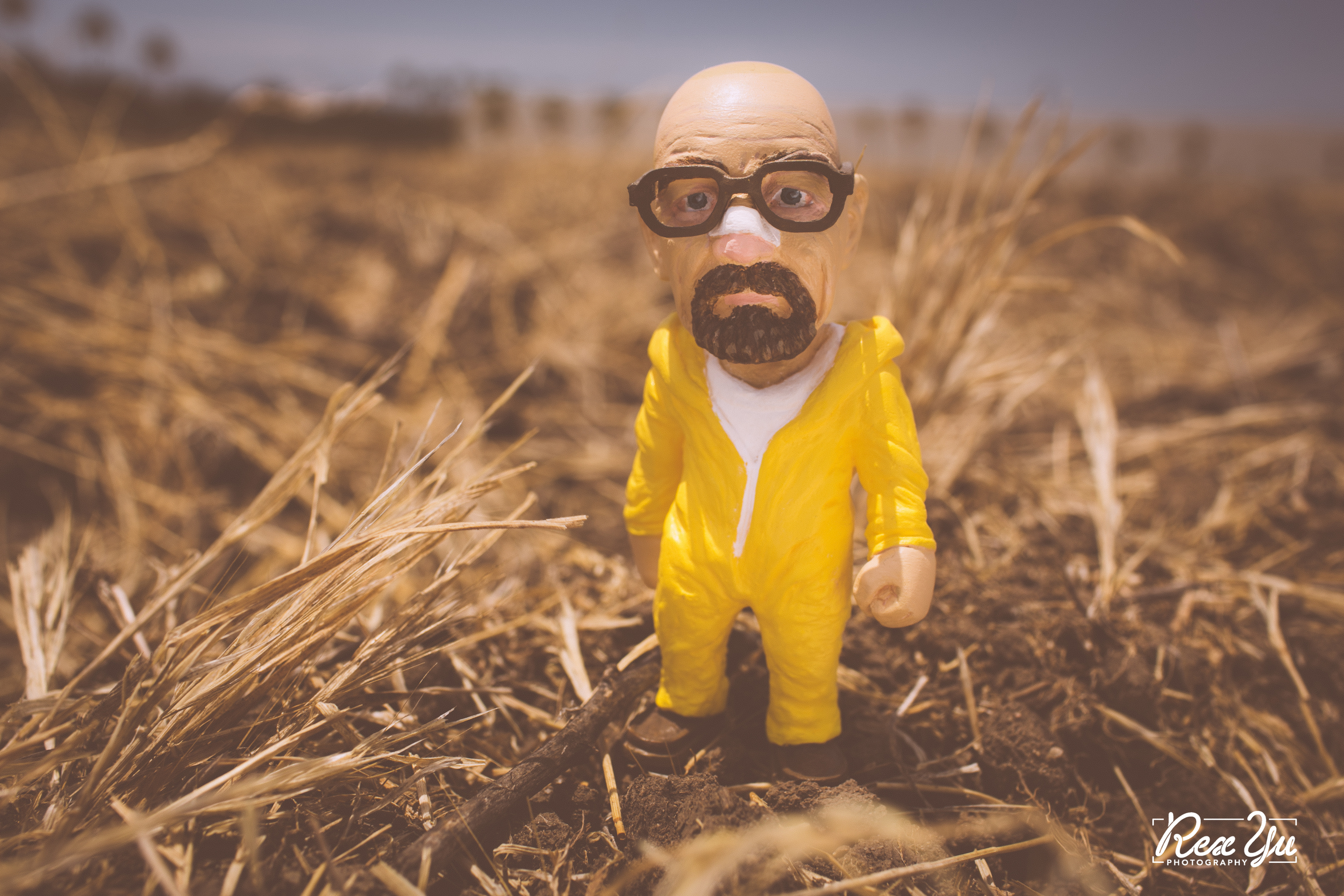 PLASTIC CELL - HEISENBERG LIMITED EDITION (8 of 13).jpg