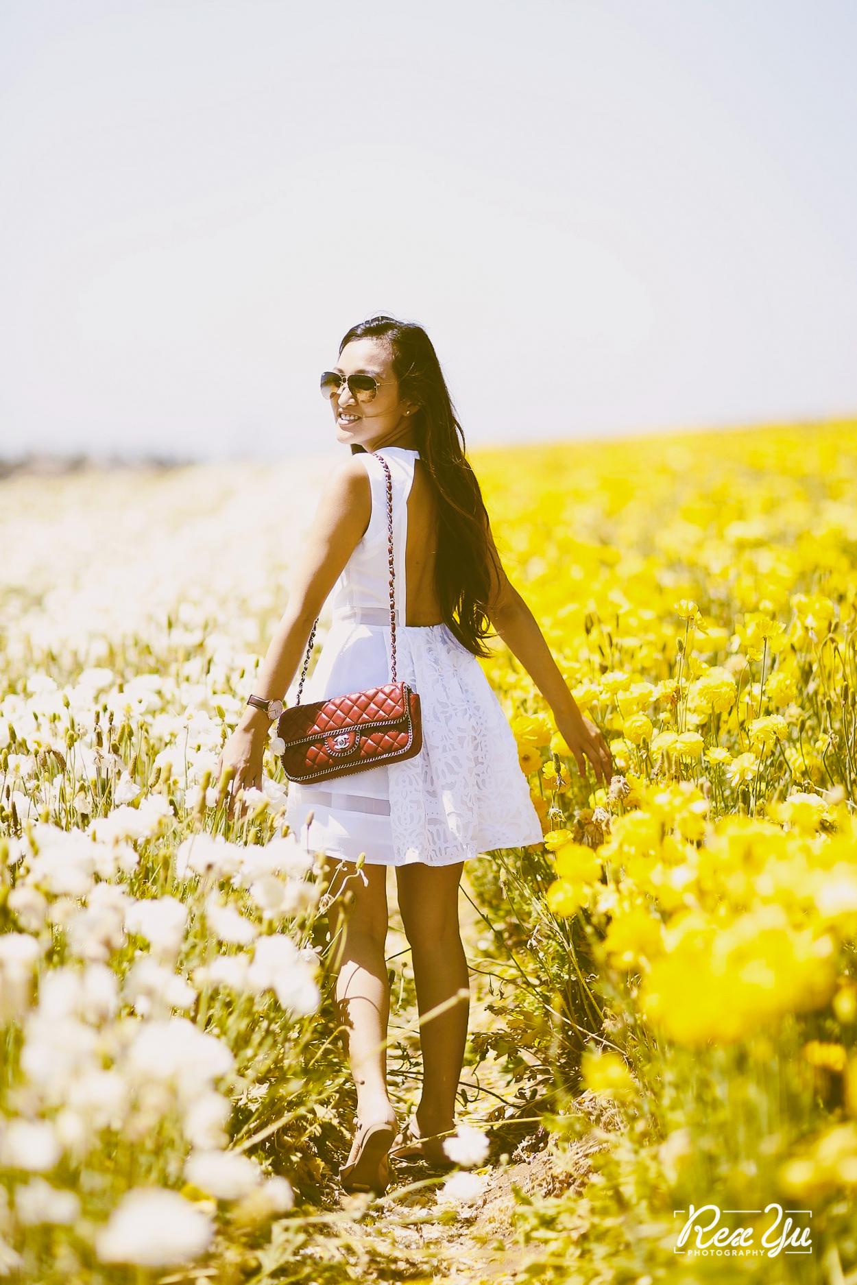 The Flower Fields of Carlsbad (22 of 58).jpg
