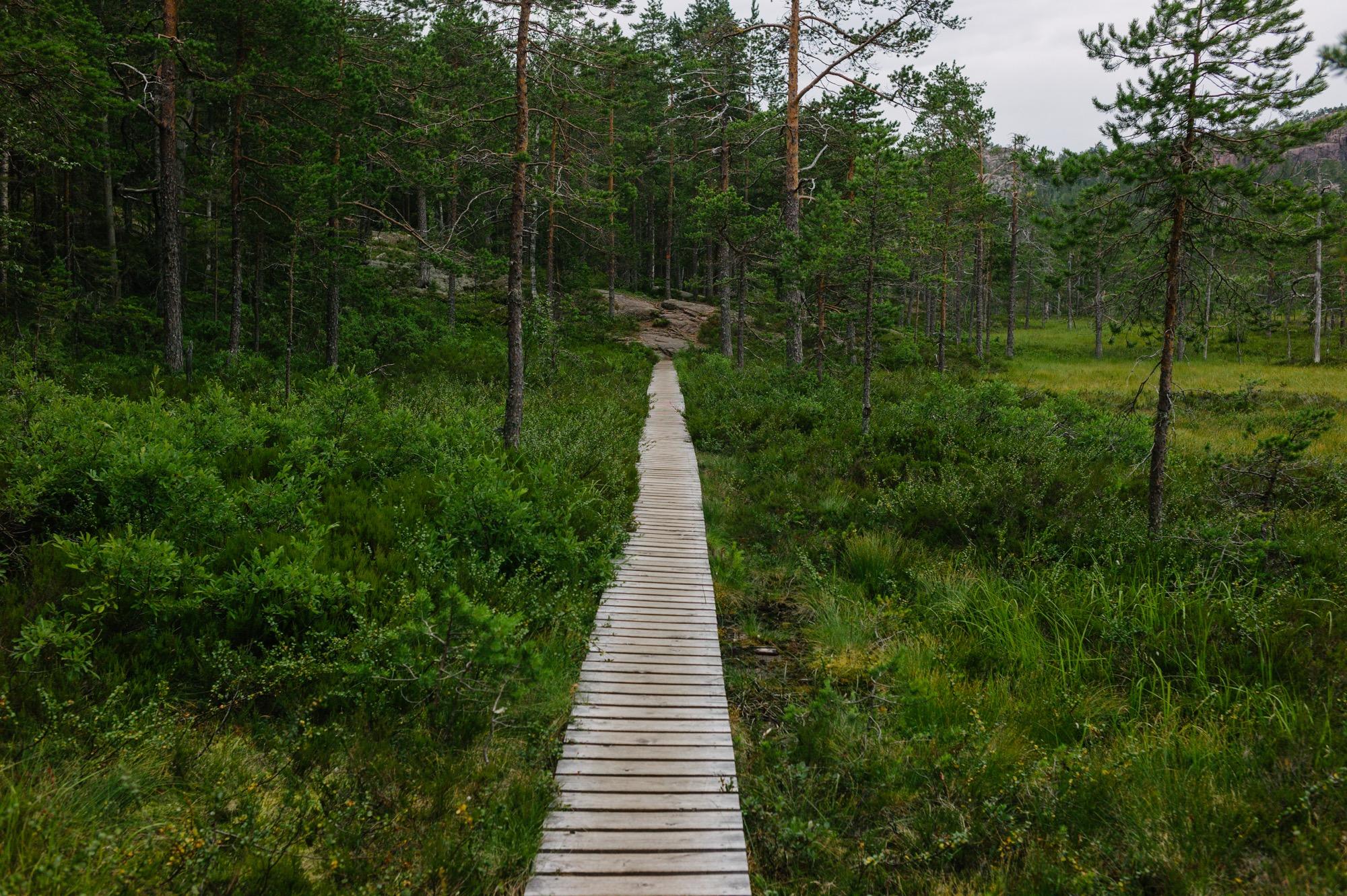 Sweden August 2015-207.jpg