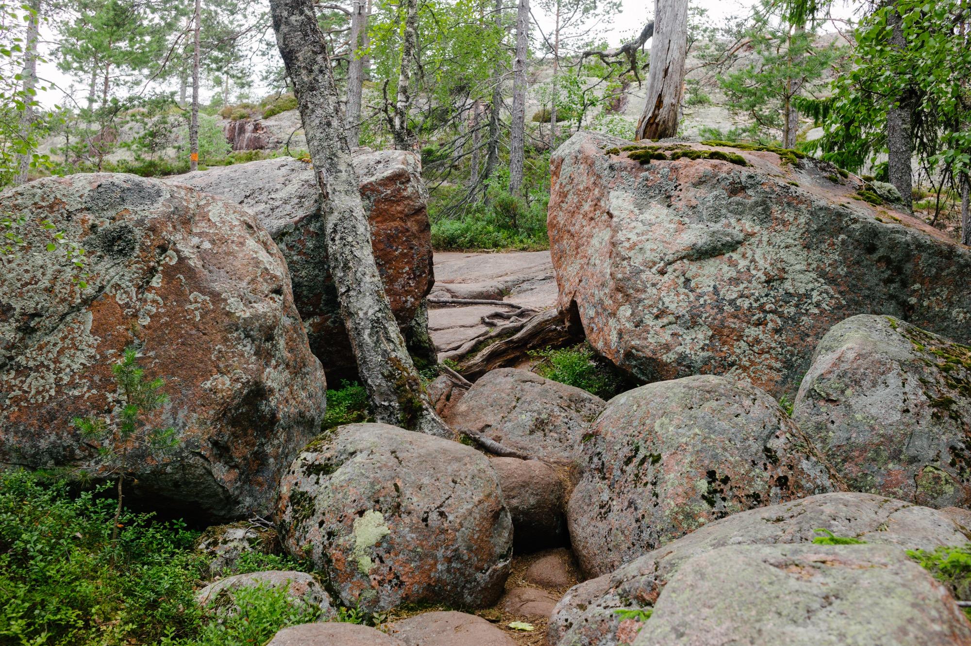 Sweden August 2015-209.jpg