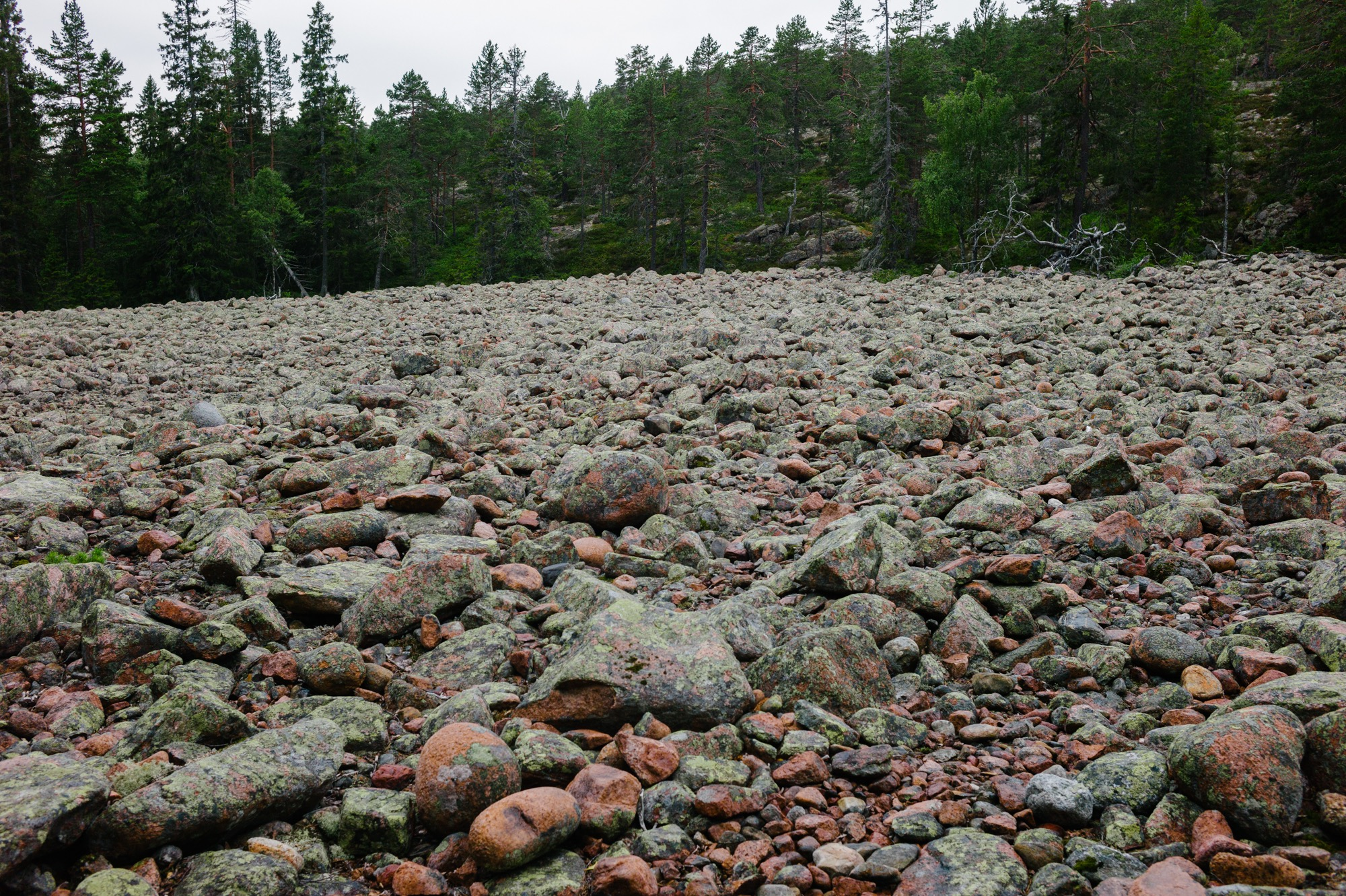 Sweden August 2015-223.jpg