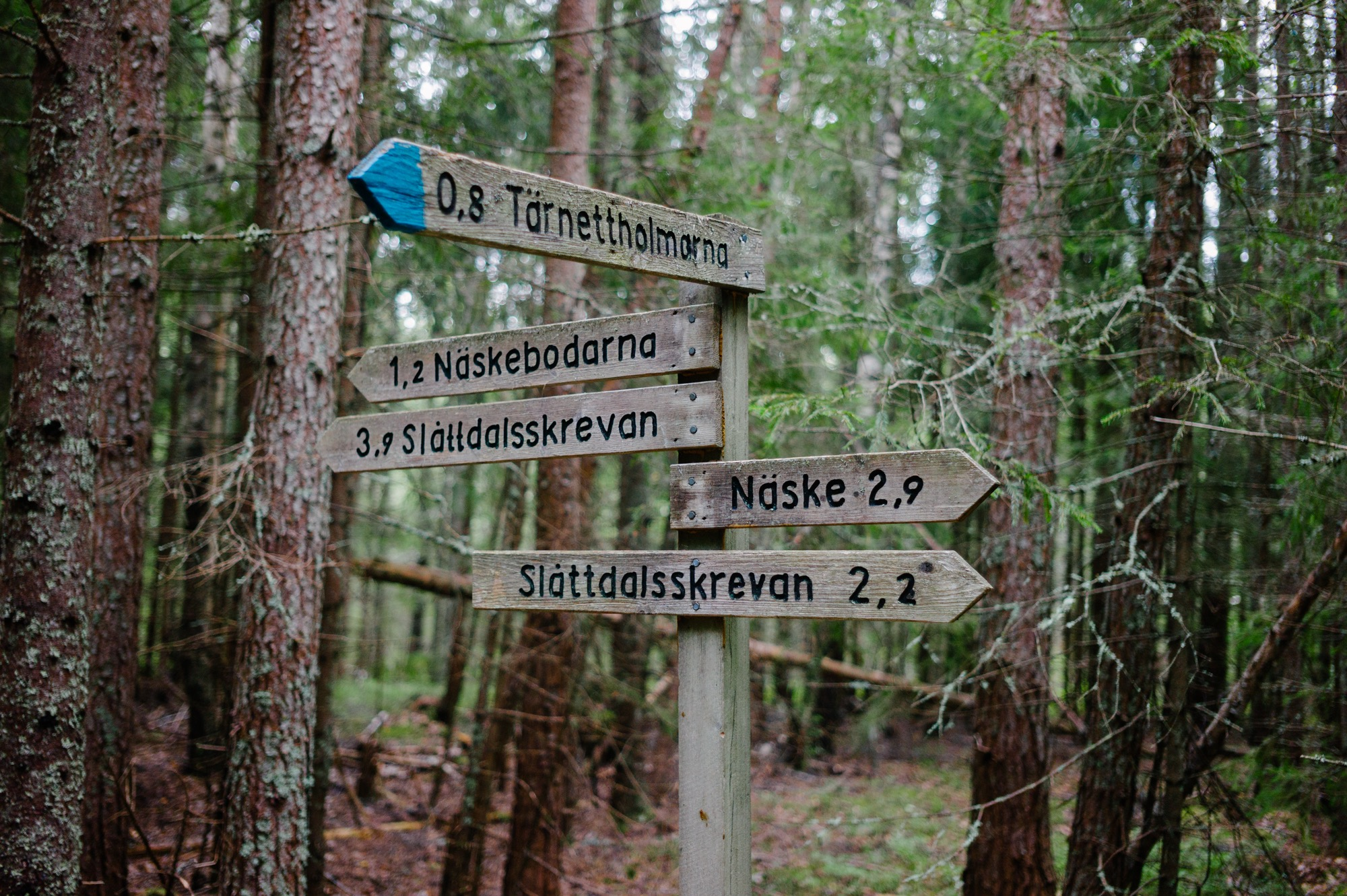 Sweden August 2015-236.jpg