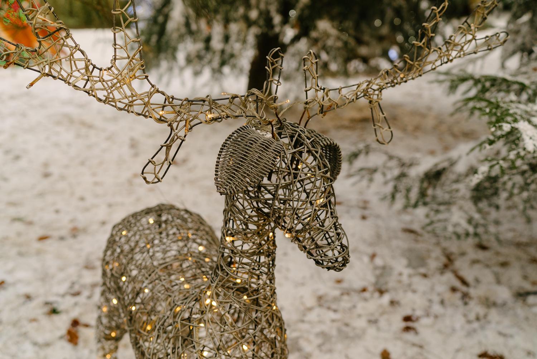 Longleat and Santa December 2017-25.jpg