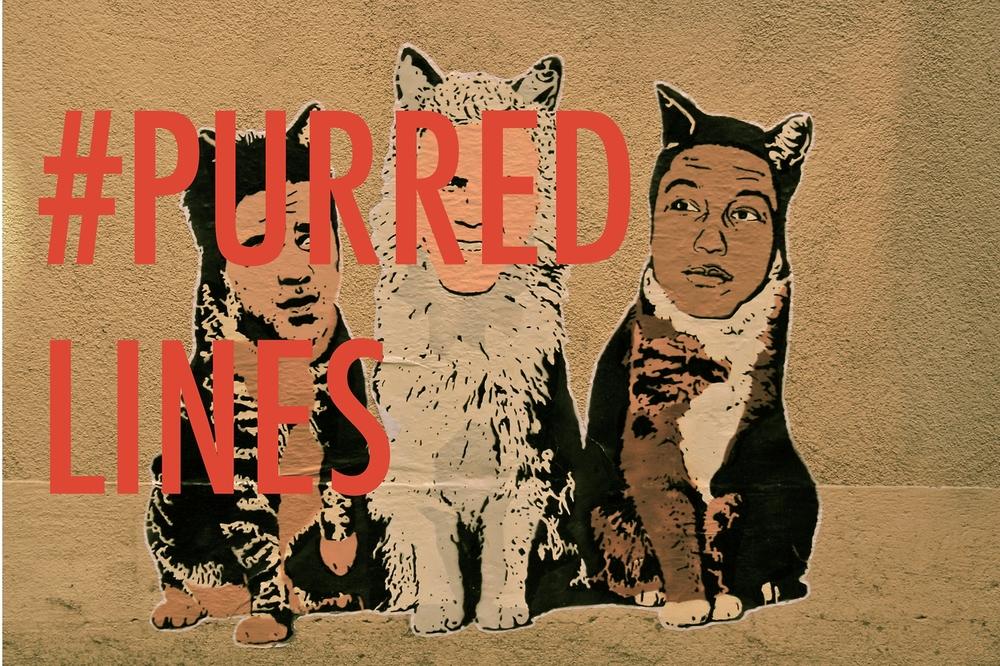 Pharrell Cats, 2013