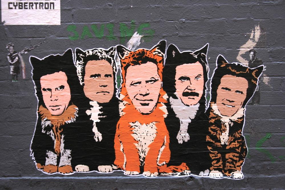Ferrell Cats, NYC