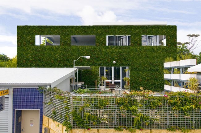 Anartist's impression of the vertical green wall at full 6 metre height with engineering and council approvals.