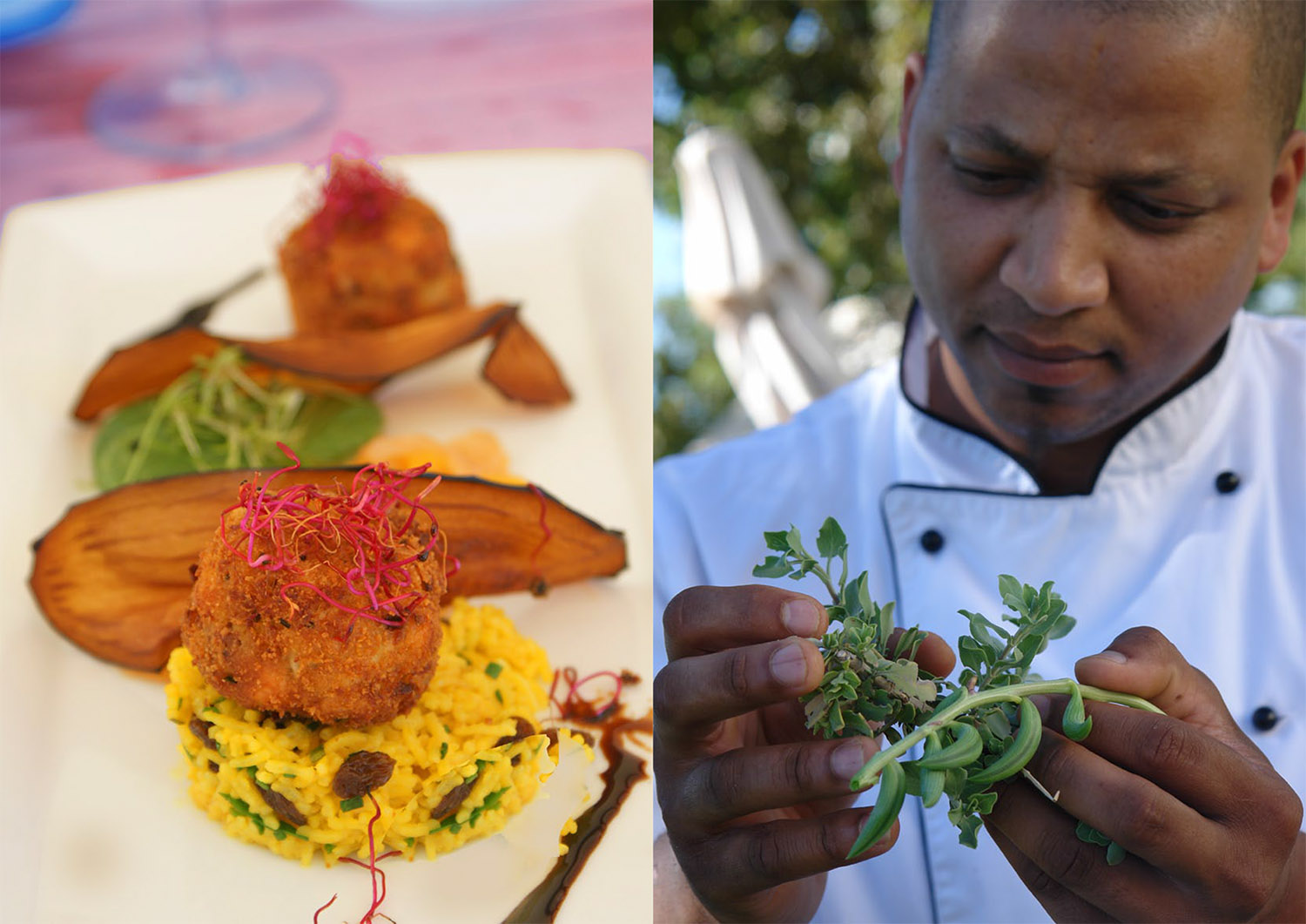 Shaun Schoeman's bold use of indigenous herbs and fynbos attracts carloads of curious customers to new Fyndraai restaurant in Franschhoek.