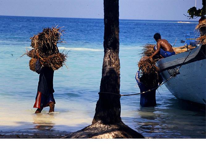 maldives_food_tradional_cuisine_tuna_7.jpg