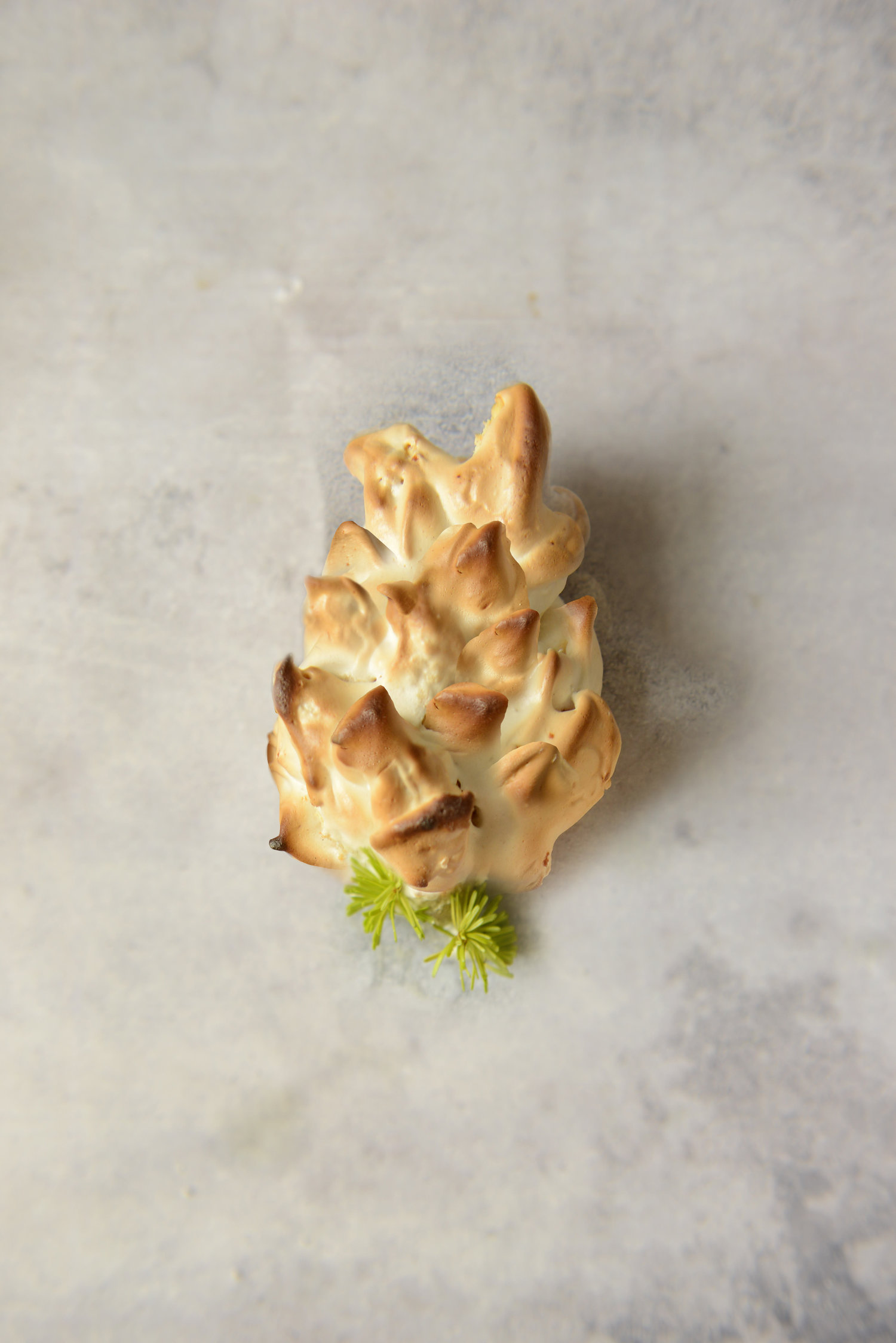 """Fir Cone"" with spruce / fir tip jelly curd filling"