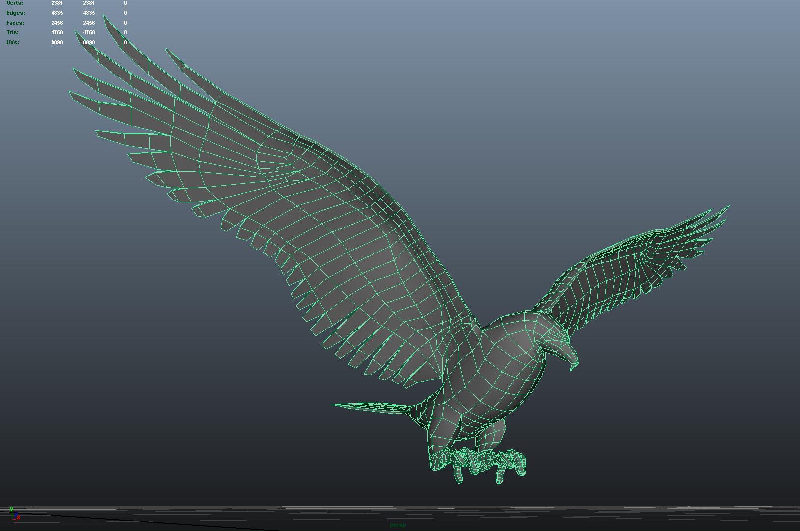 Eagle_Front_Wireframe.jpg