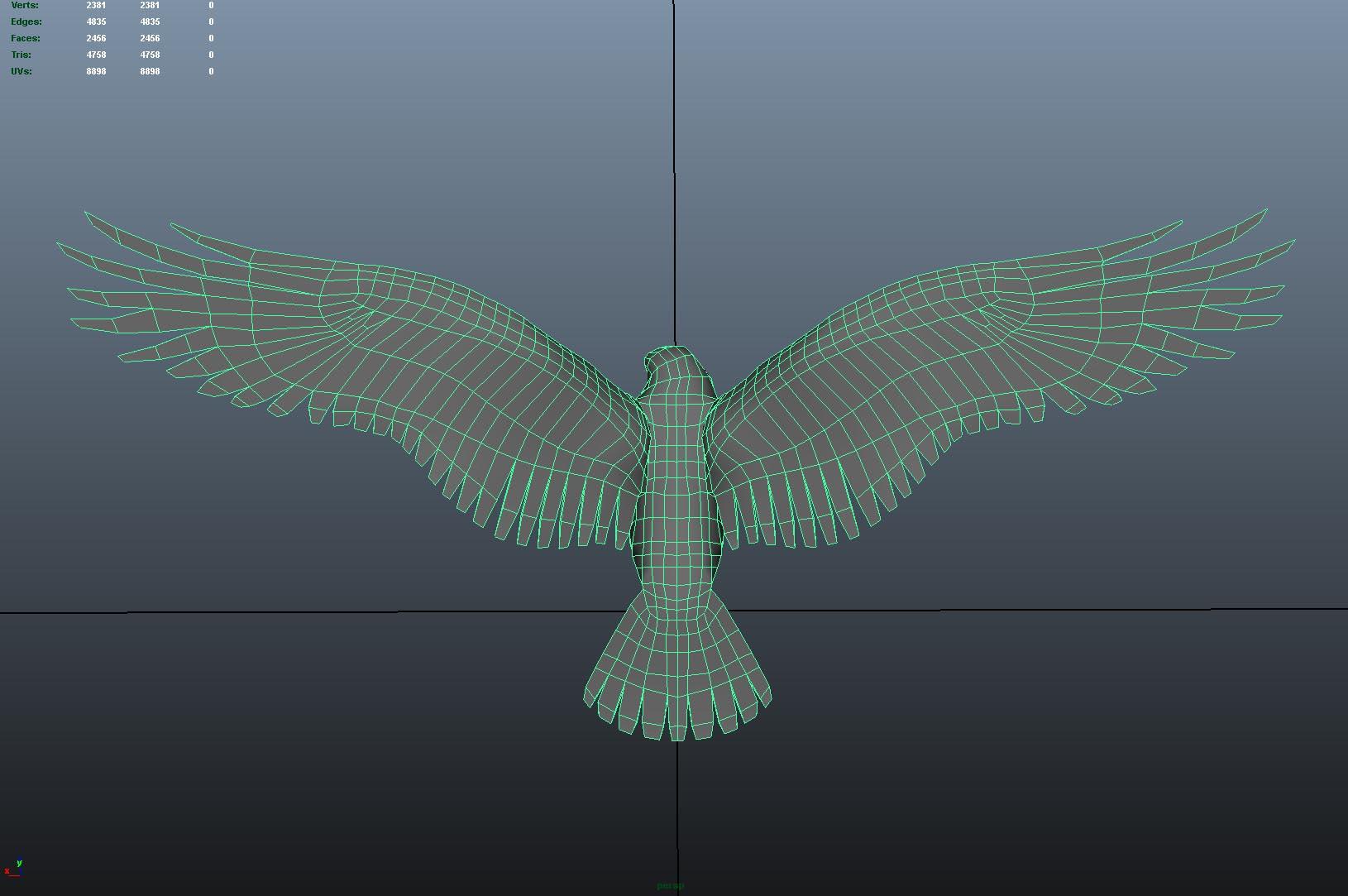 Eagle_Top_Wireframe.jpg