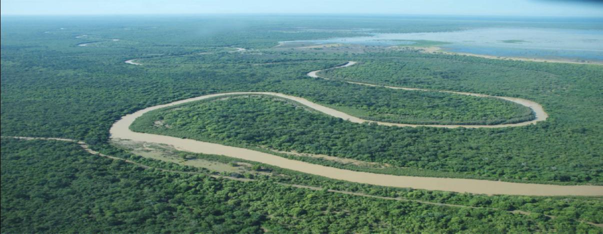 river_jungle_landscape1.png