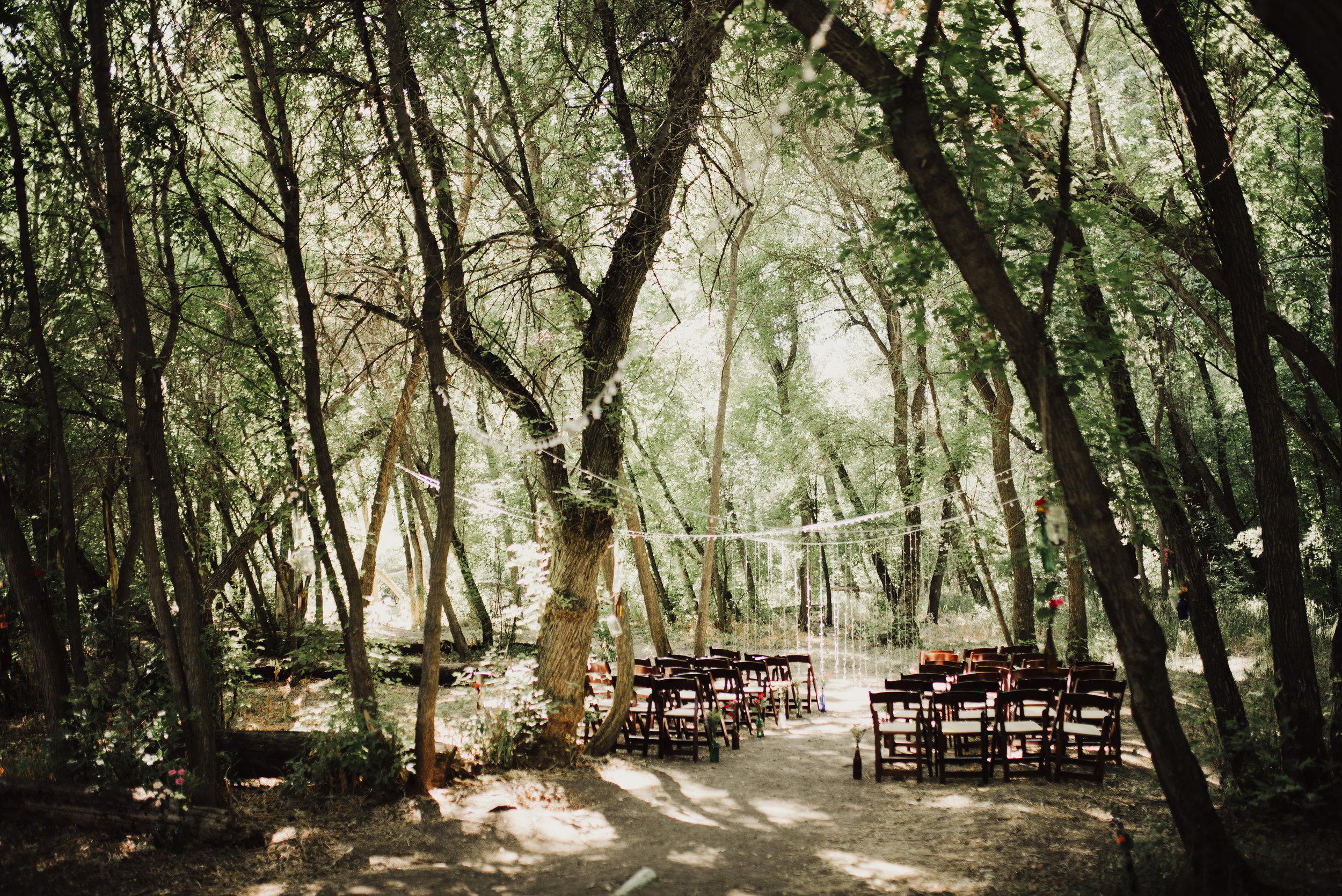 intimate-utah-wedding-in-the-woods.jpg