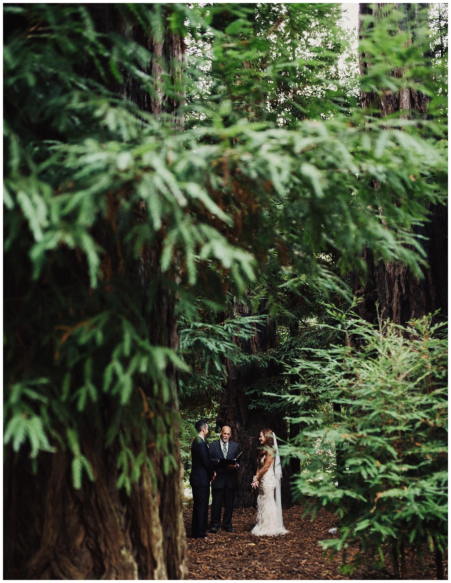 Big Sur Elopement in the Redwoods