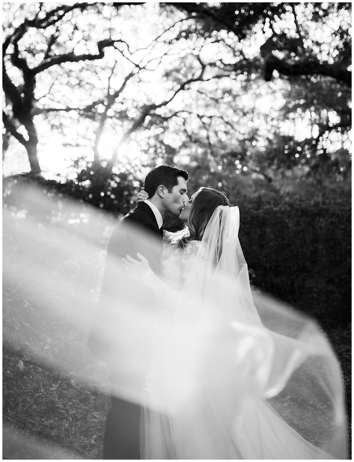 Spanish Moss Tree Wedding at Eden State Park