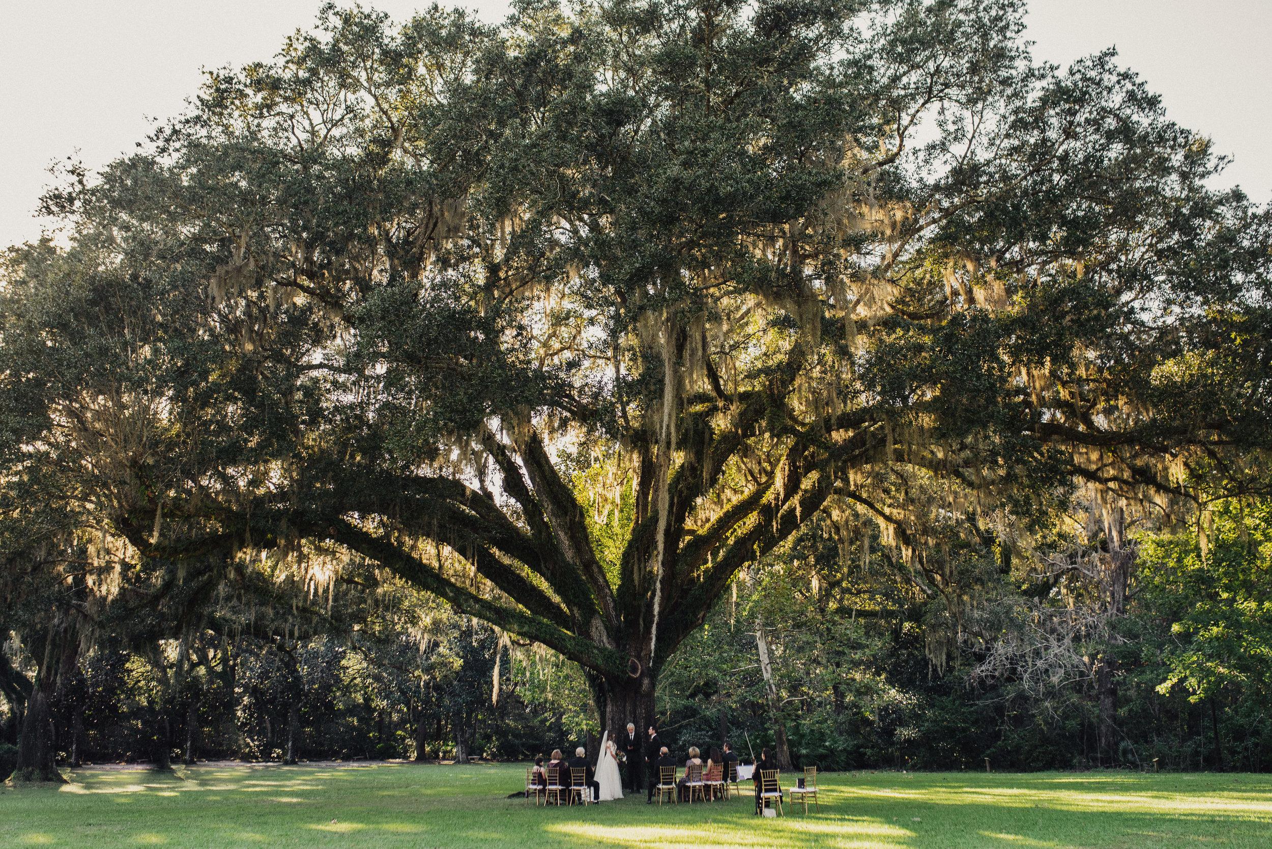 Florida Wedding in Eden State Park
