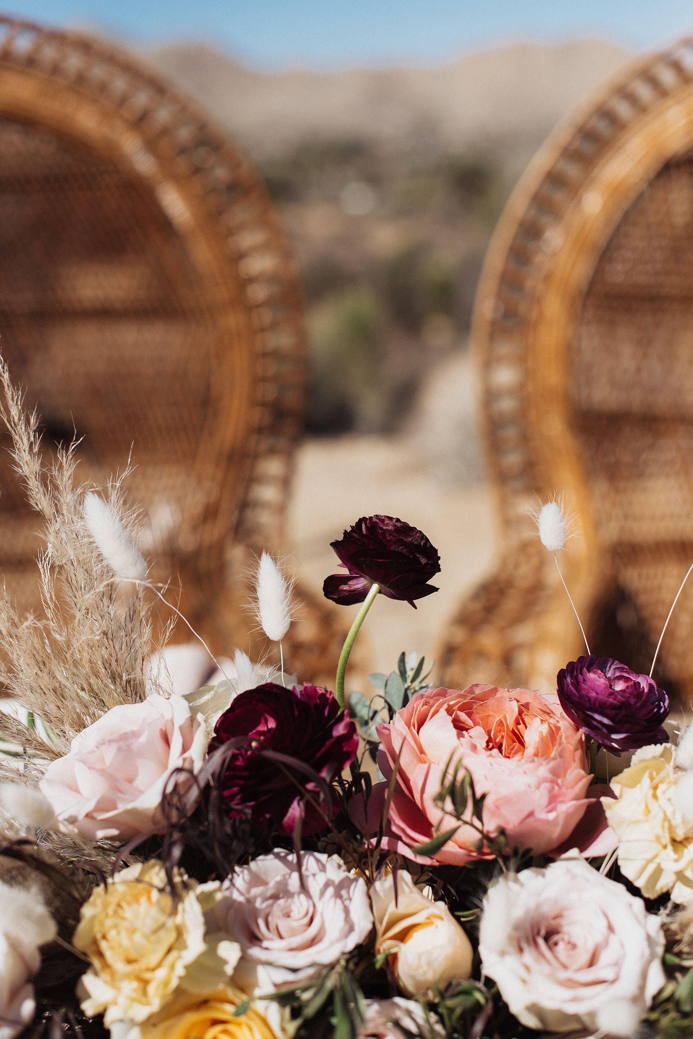 cactus-moon-retreat-wedding_4071.jpg