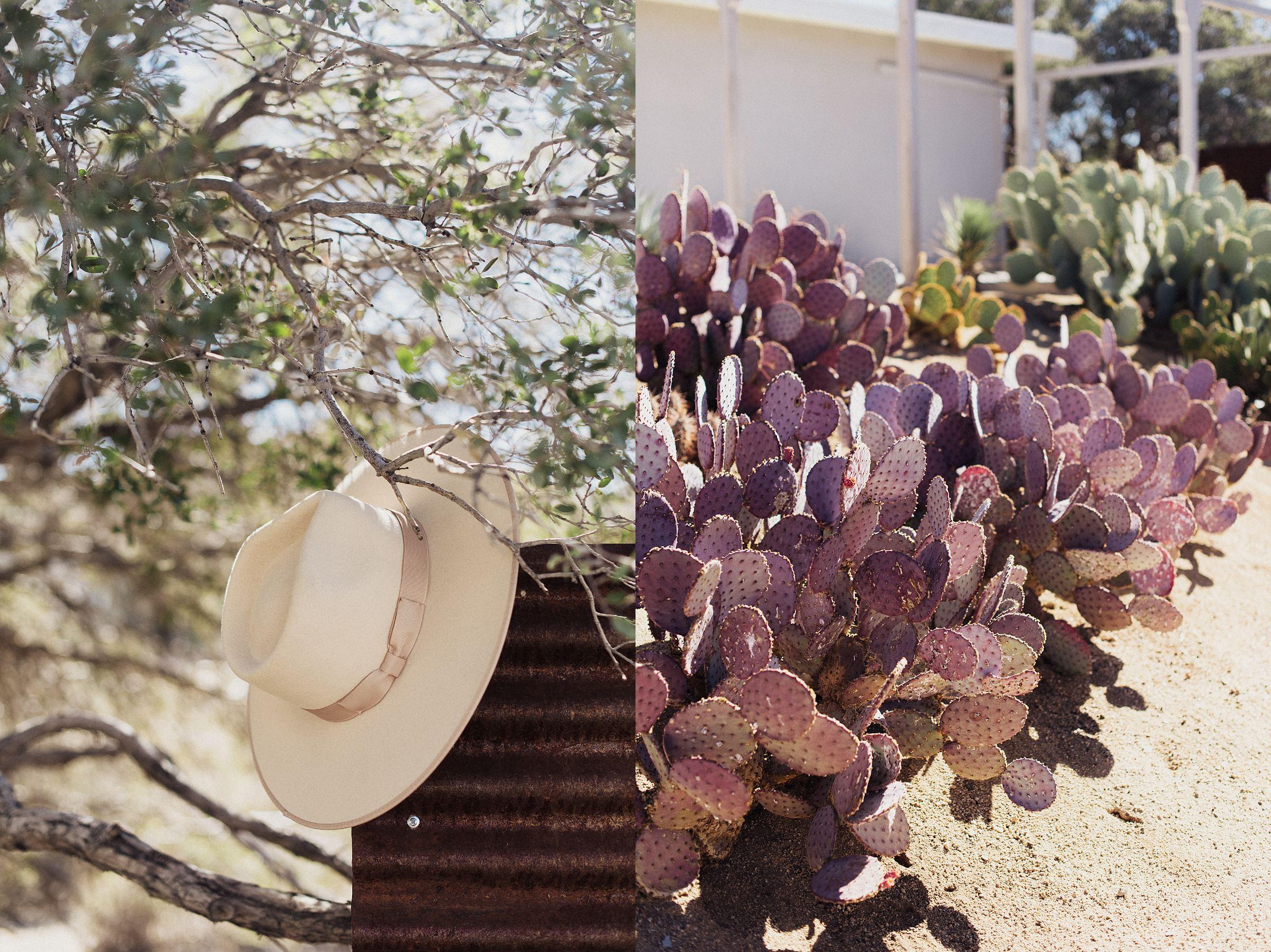cactus-moon-retreat-wedding_4077.jpg