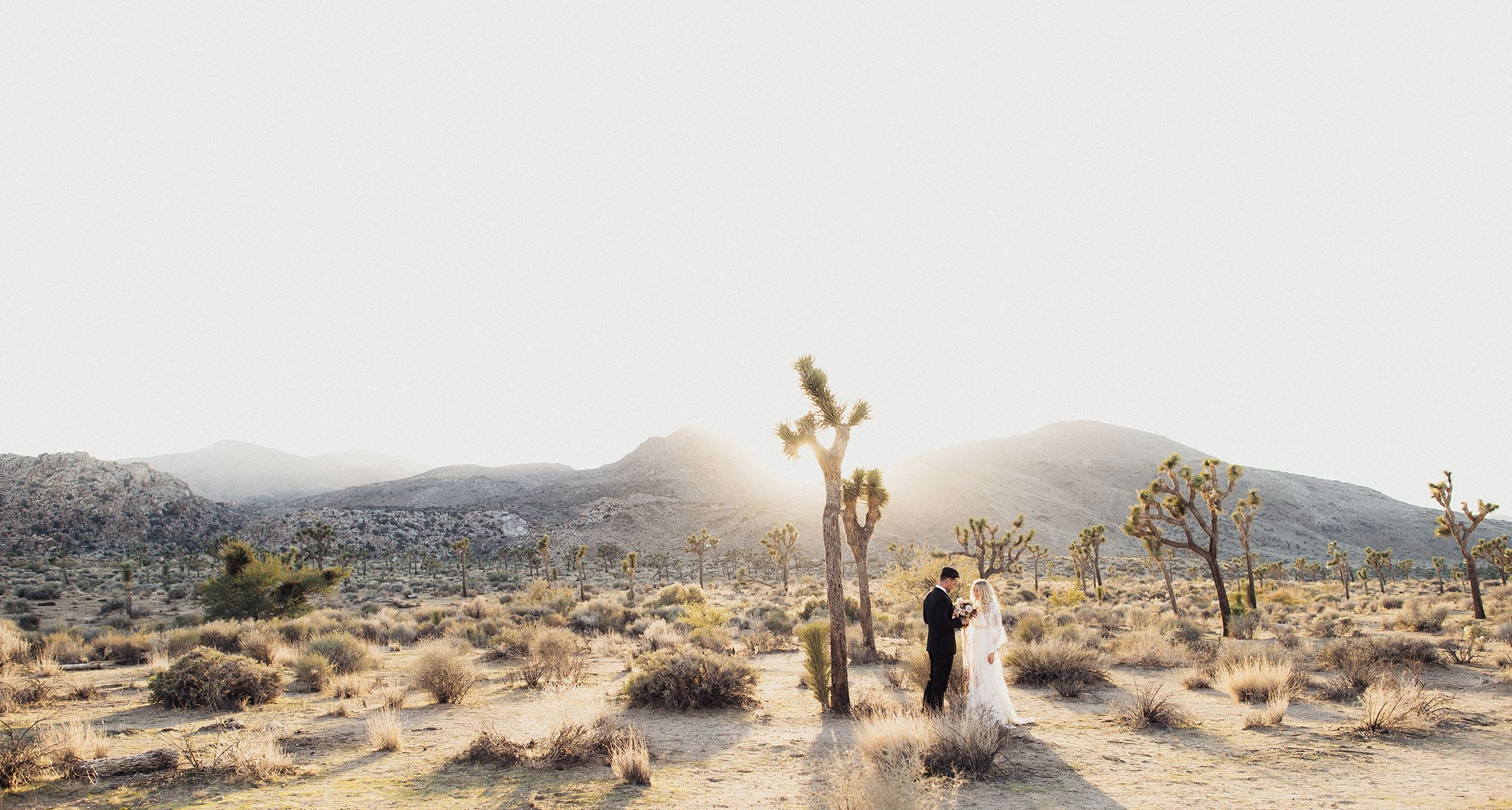 wedding portraits at cactus moon retreat venue