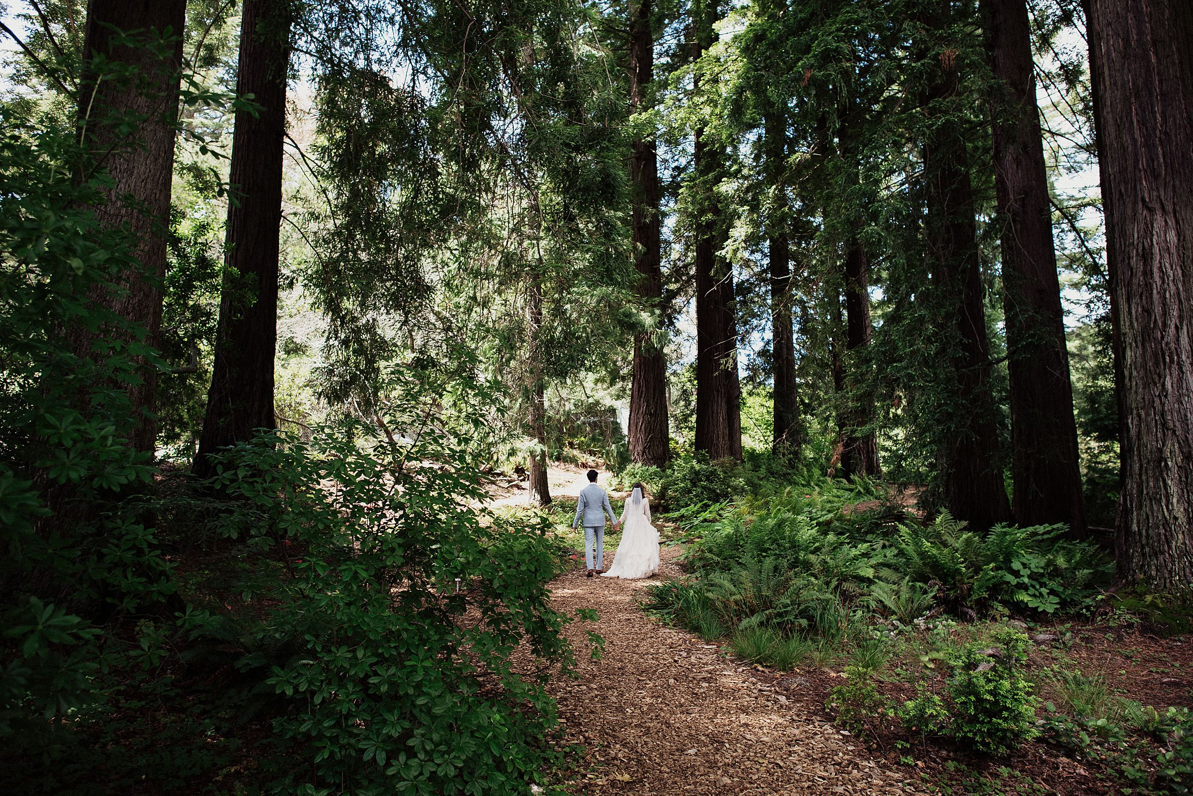bride and groom at tilden park