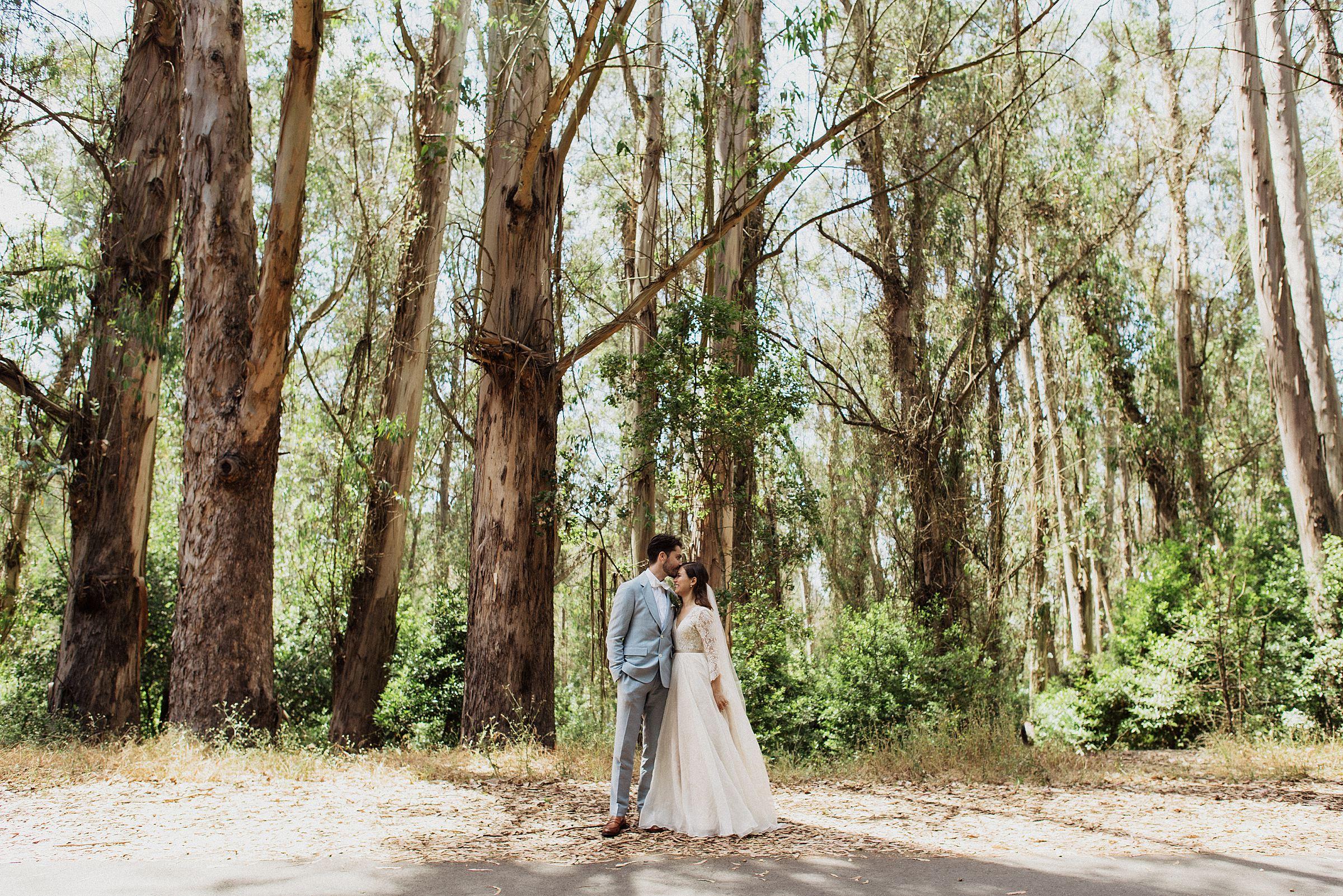 wedding day at tilden park