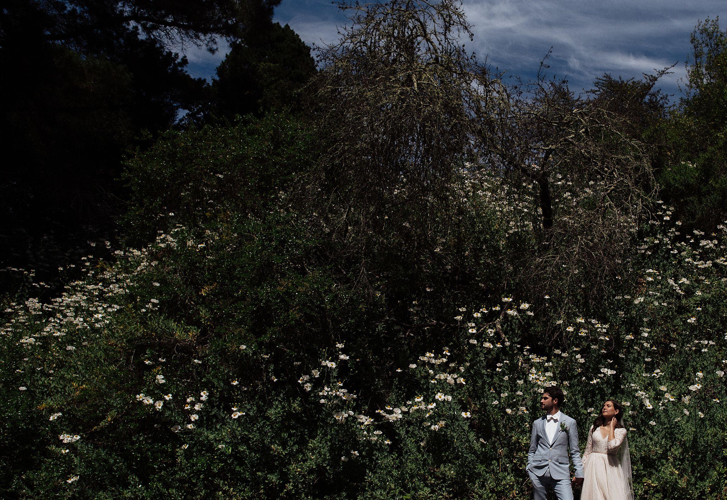 tilden-park-wedding_0235.jpg