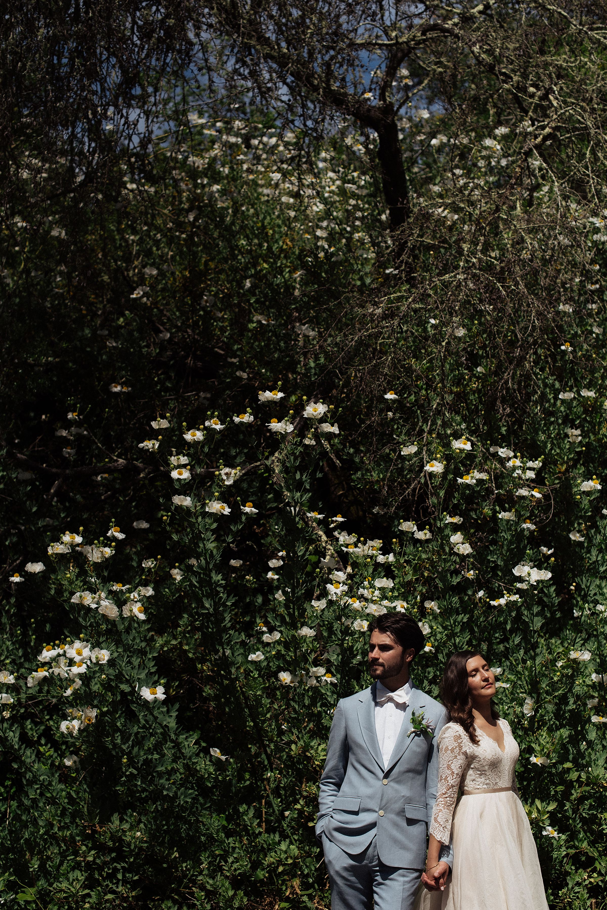 tilden-park-wedding_0237.jpg