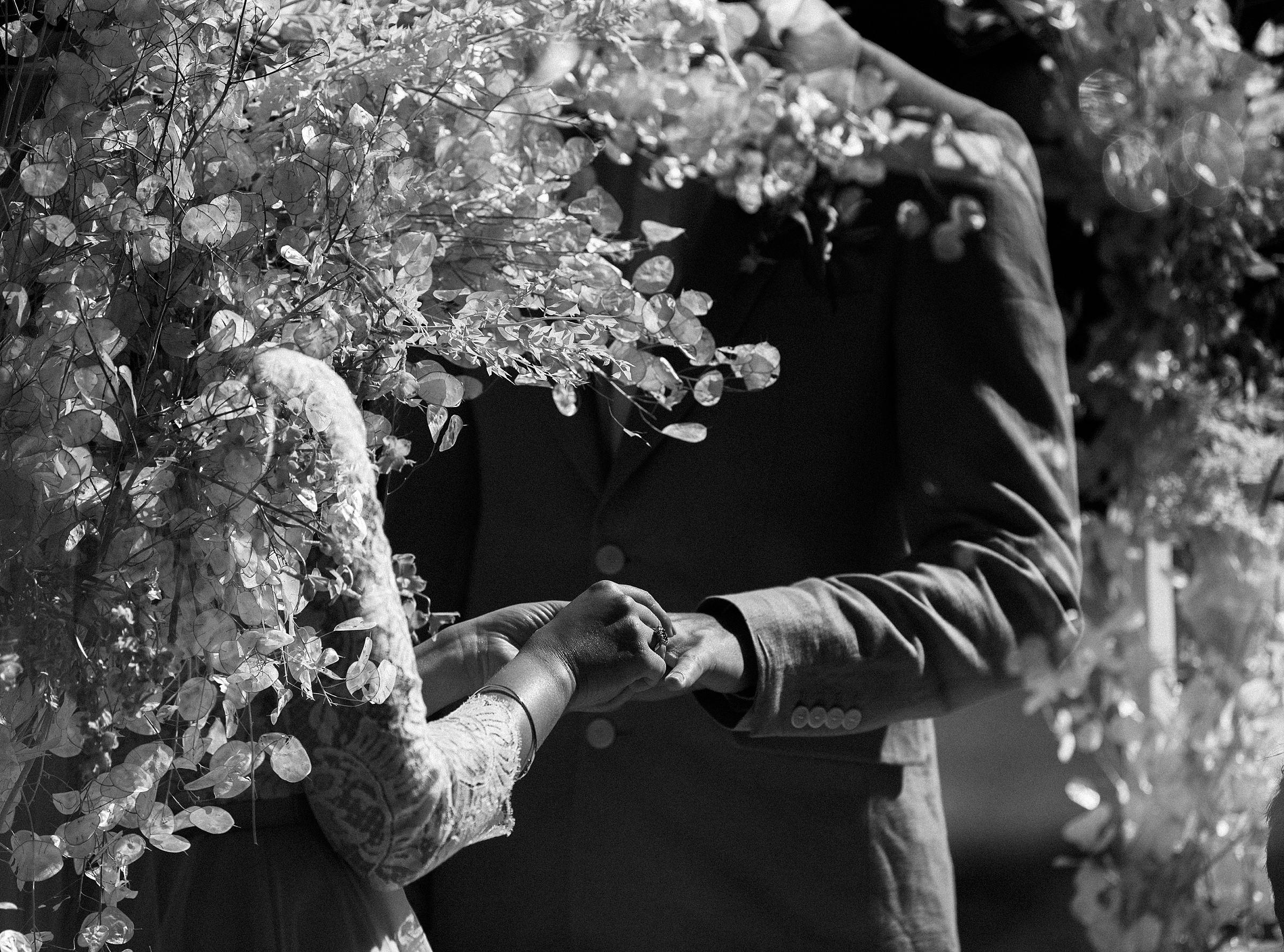 tilden-park-wedding_0254.jpg