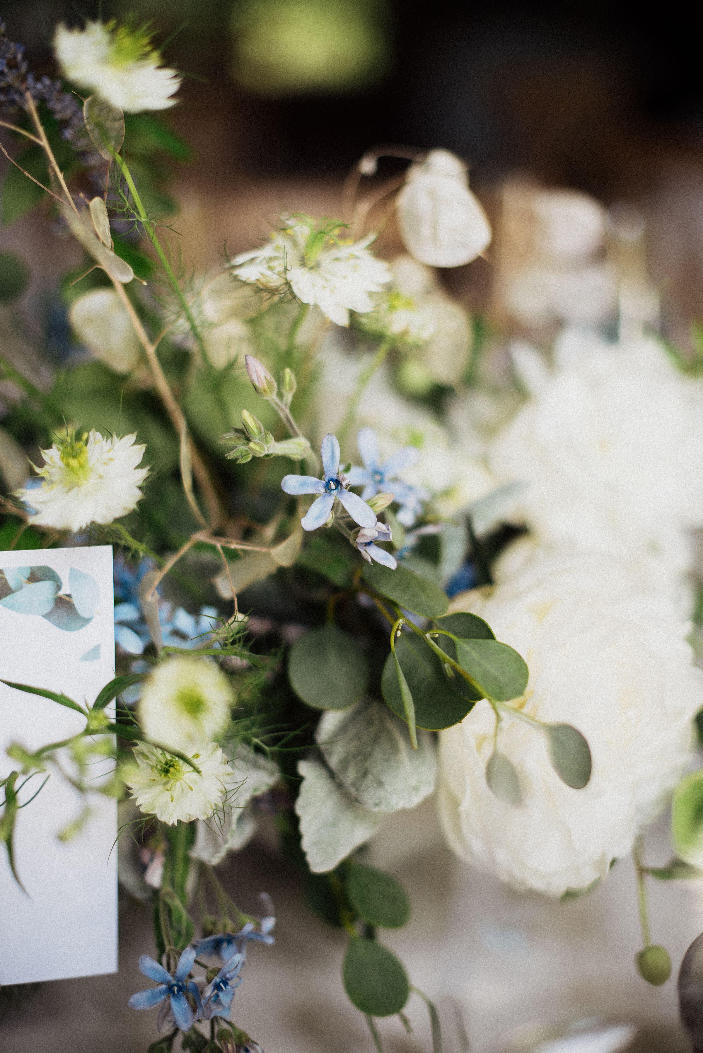 tilden-park-wedding_0265.jpg