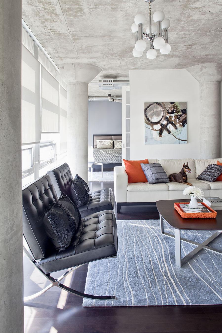 Living Room_03_Dog-002_final.jpg