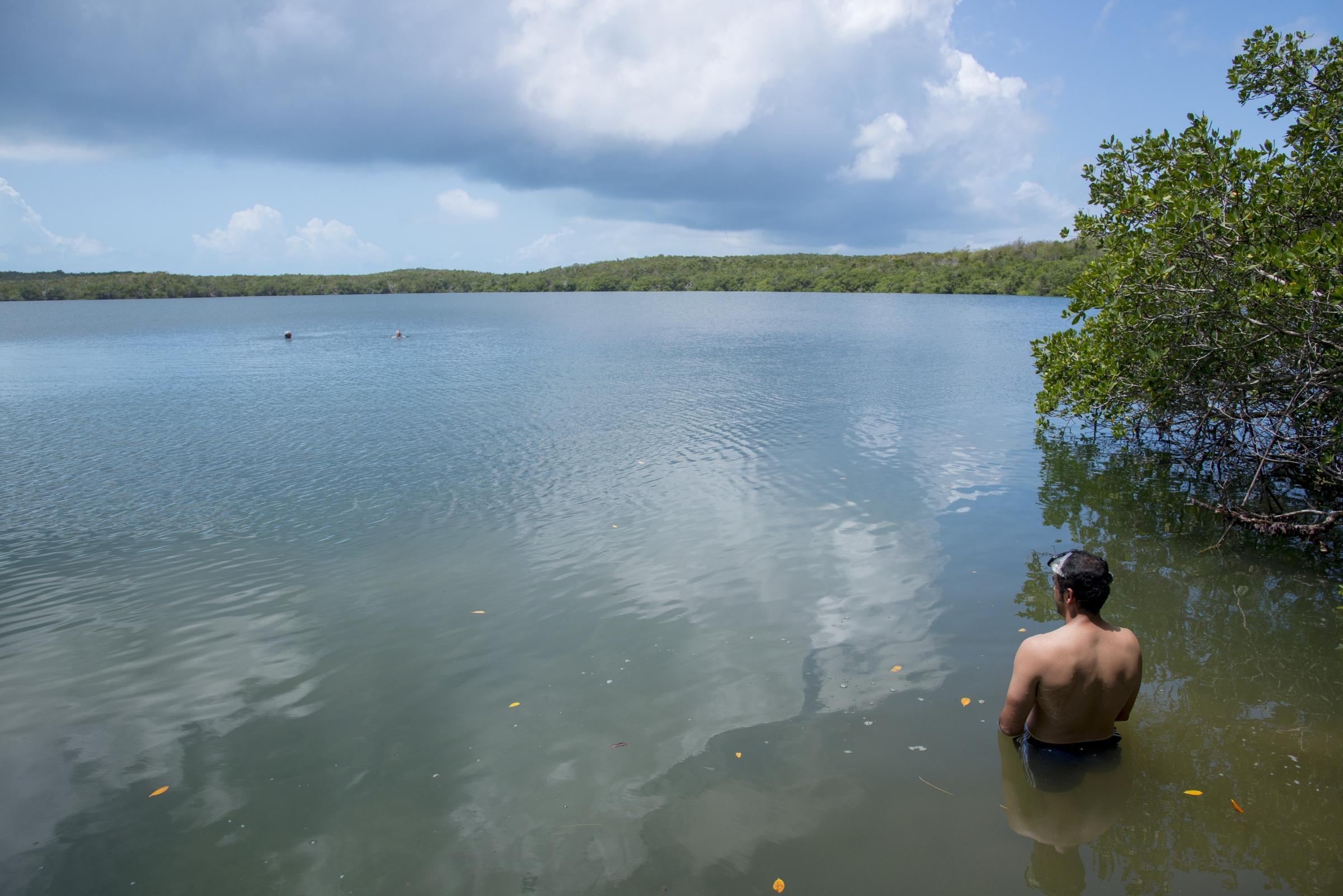 Fernando Bretos snorkeling Turtle Lake. Courtesy of Neil Ever Obsborne, iLCP