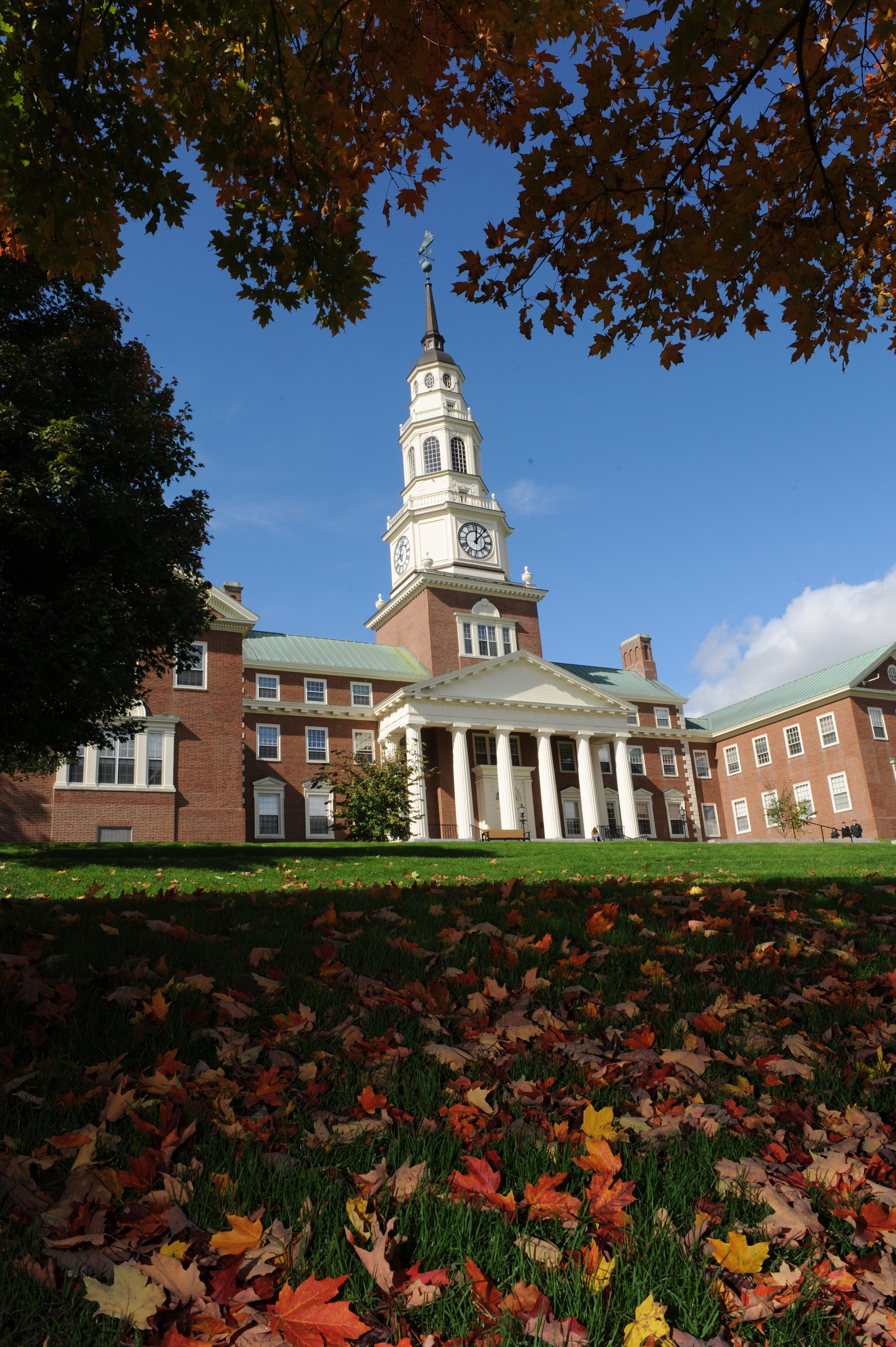 Our College Assistance Guides You to Put Forth Your Best Application for Admissions.jpg