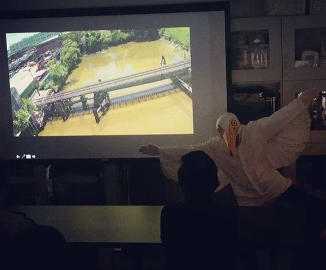 The Great Egret lecturing at SVA BFA Bio-Art class. #environmental #nature #bio-remediation #Bushwick #svafinearts #greategret