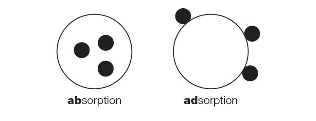 Dermalogica absorption vs adsorption.png