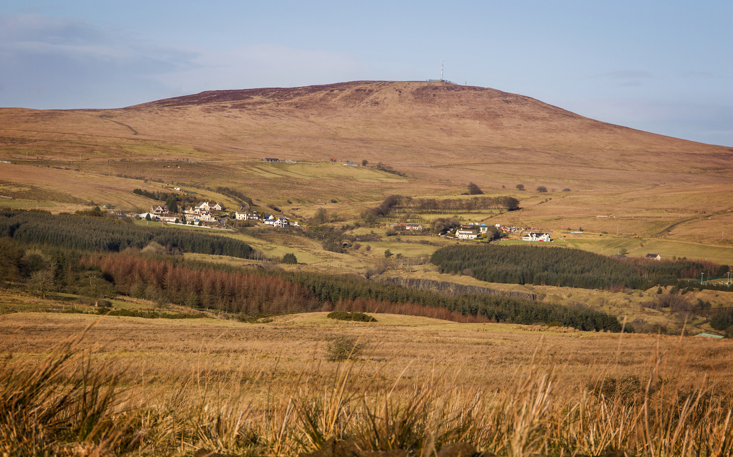 View of Divis mountain from Slievenacloy